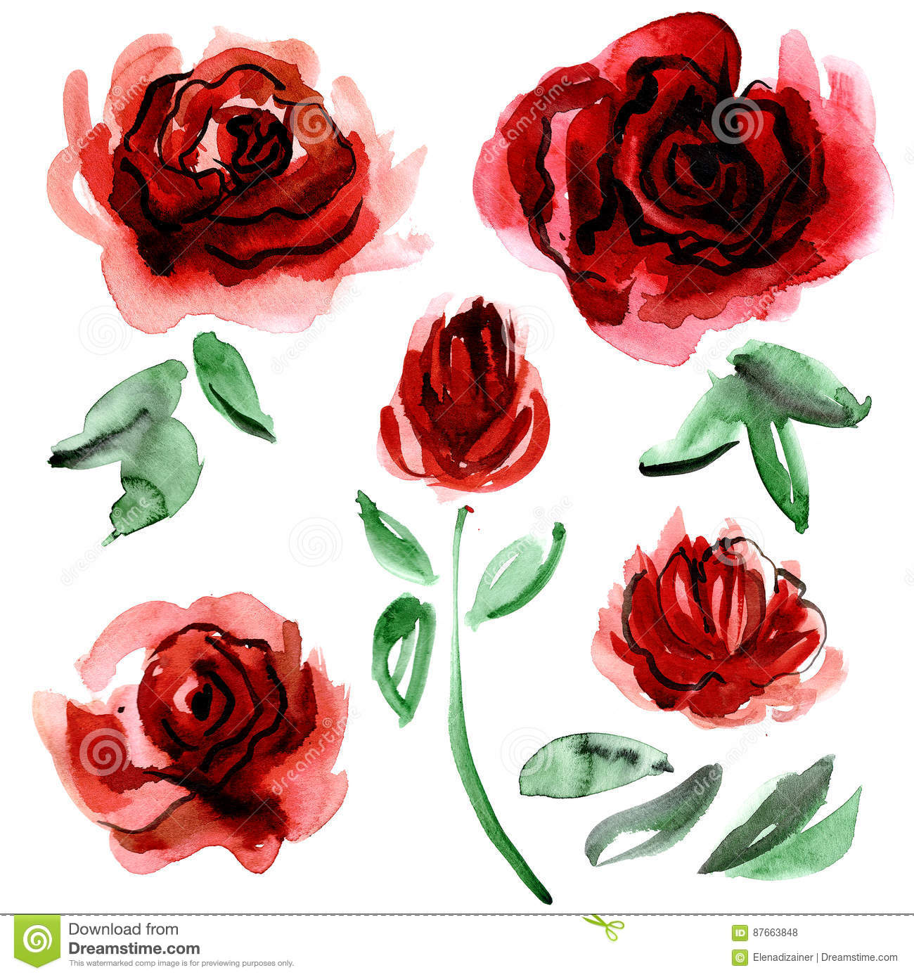 Watercolor Hand Painted Flower Elements Stock Illustration