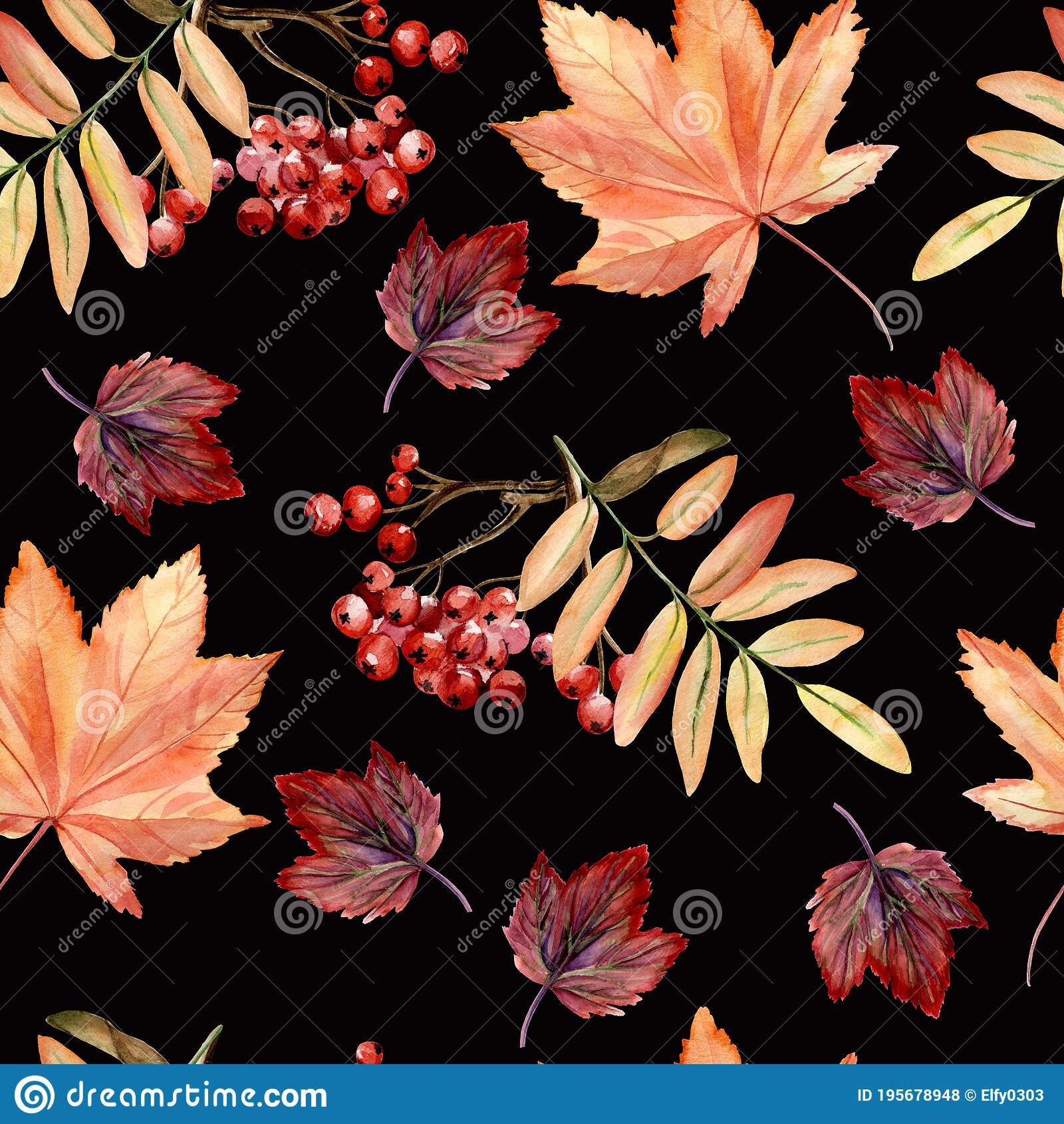 Watercolor Hand Painted Seamless Pattern With Autumn Leaves Rowan Branches On Black Background Perfect For Fall Or Thanksgiving Stock Illustration Illustration Of Digital Park 195678948