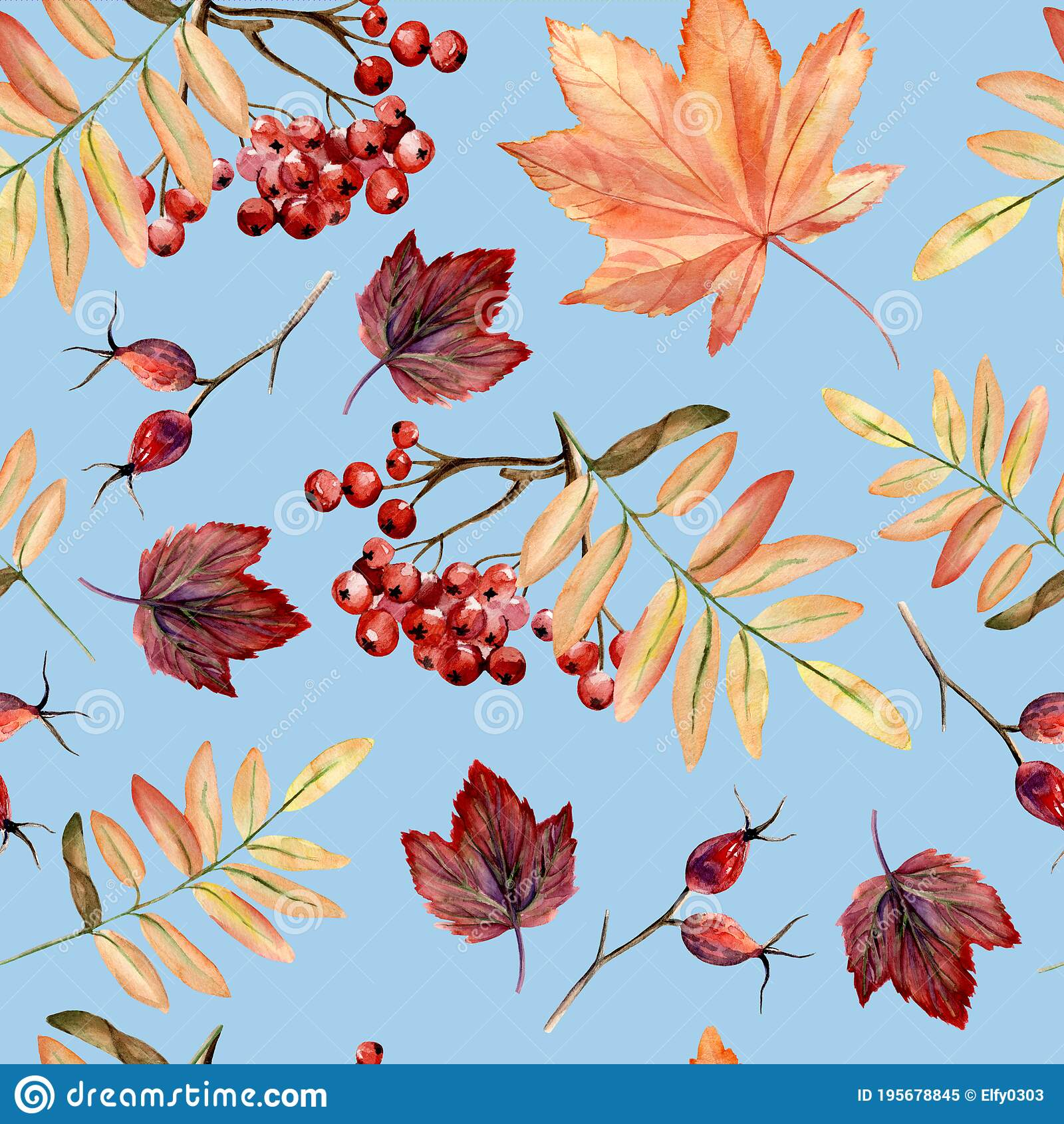 Watercolor Hand Painted Seamless Pattern With Autumn Leaves Rowan Branches On Blue Background Perfect For Fall Or Thanksgiving Stock Illustration Illustration Of Drawn Autumn 195678845