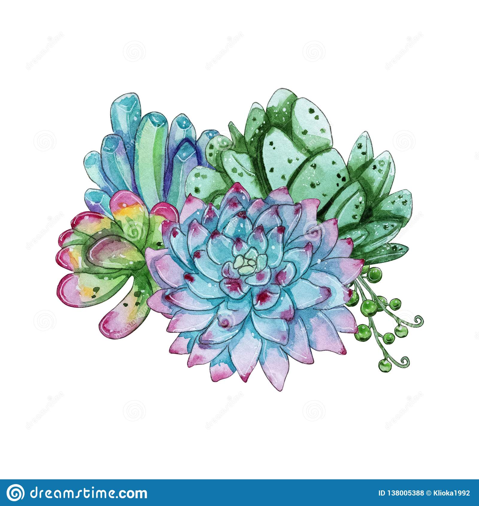 Watercolor Handpainted Succulent Plant Composition Stock Illustration Illustration Of Cartoon Composition 138005388