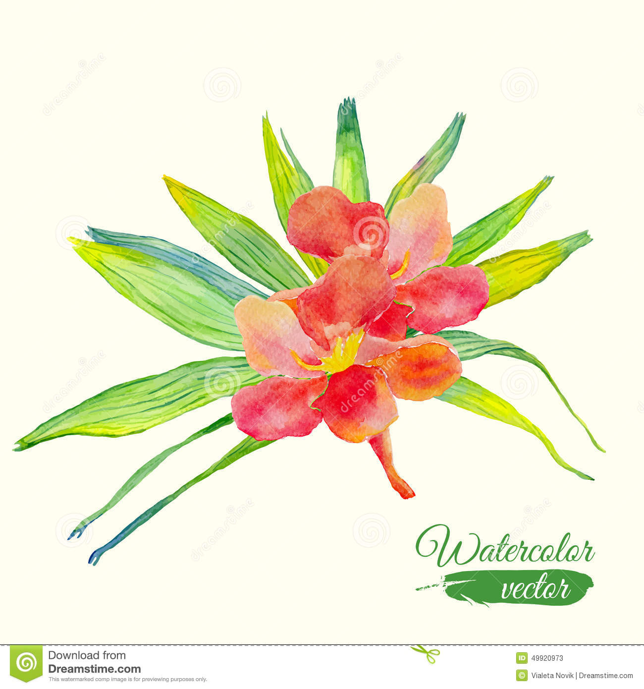 Watercolor Hibiscus Flower And Palm Leaf Bouquet Stock