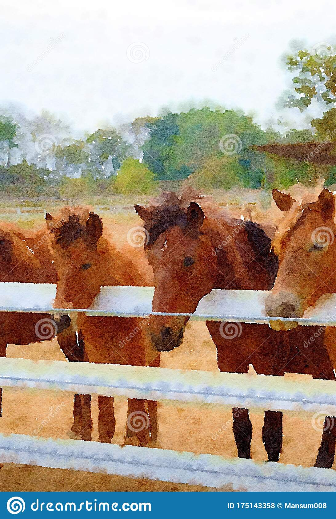 Watercolor Of Horse In Country Farm Stock Illustration Illustration Of Watercolor Park 175143358