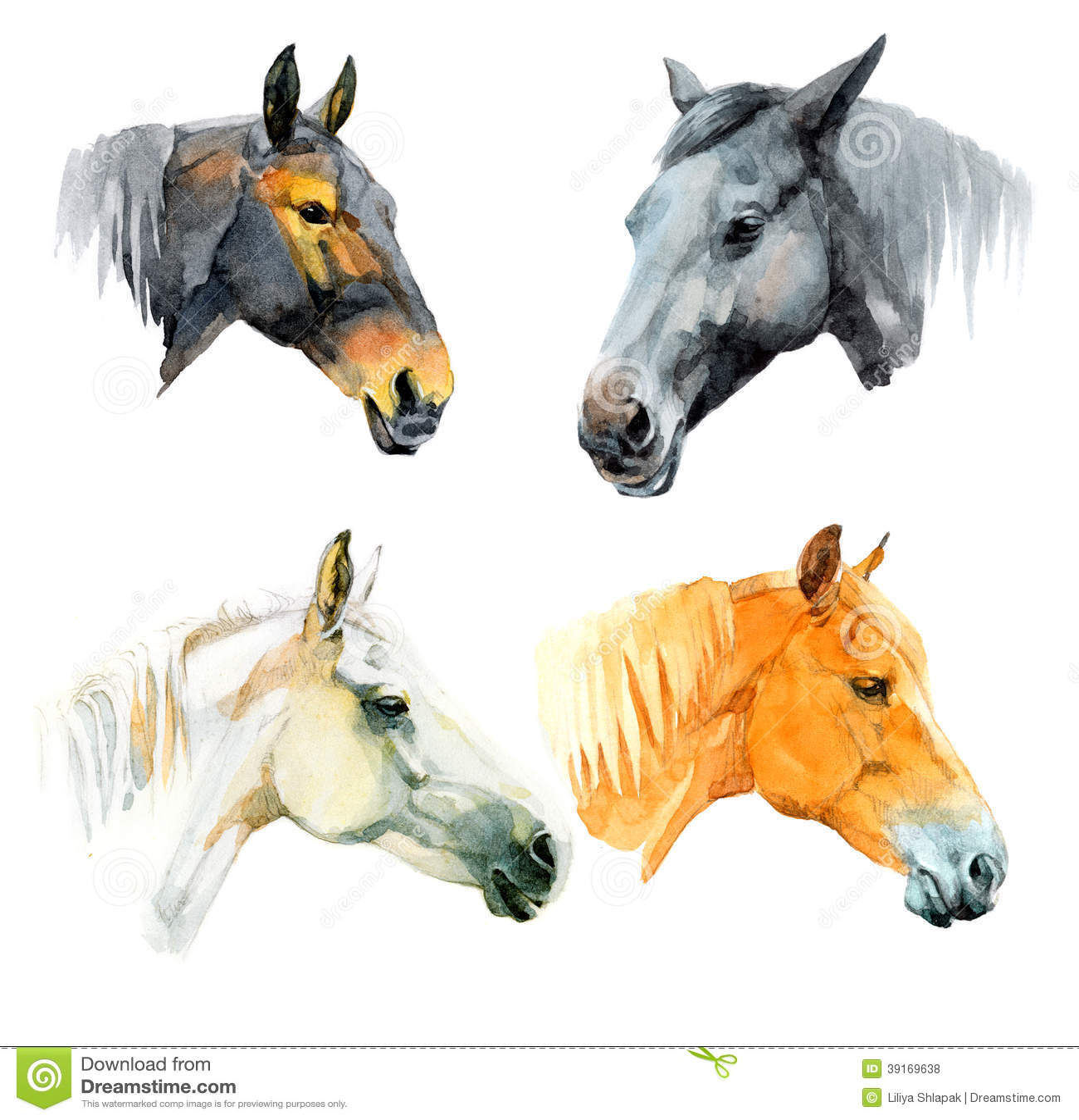 Watercolor Horses Stock Illustration - Image: 39169638