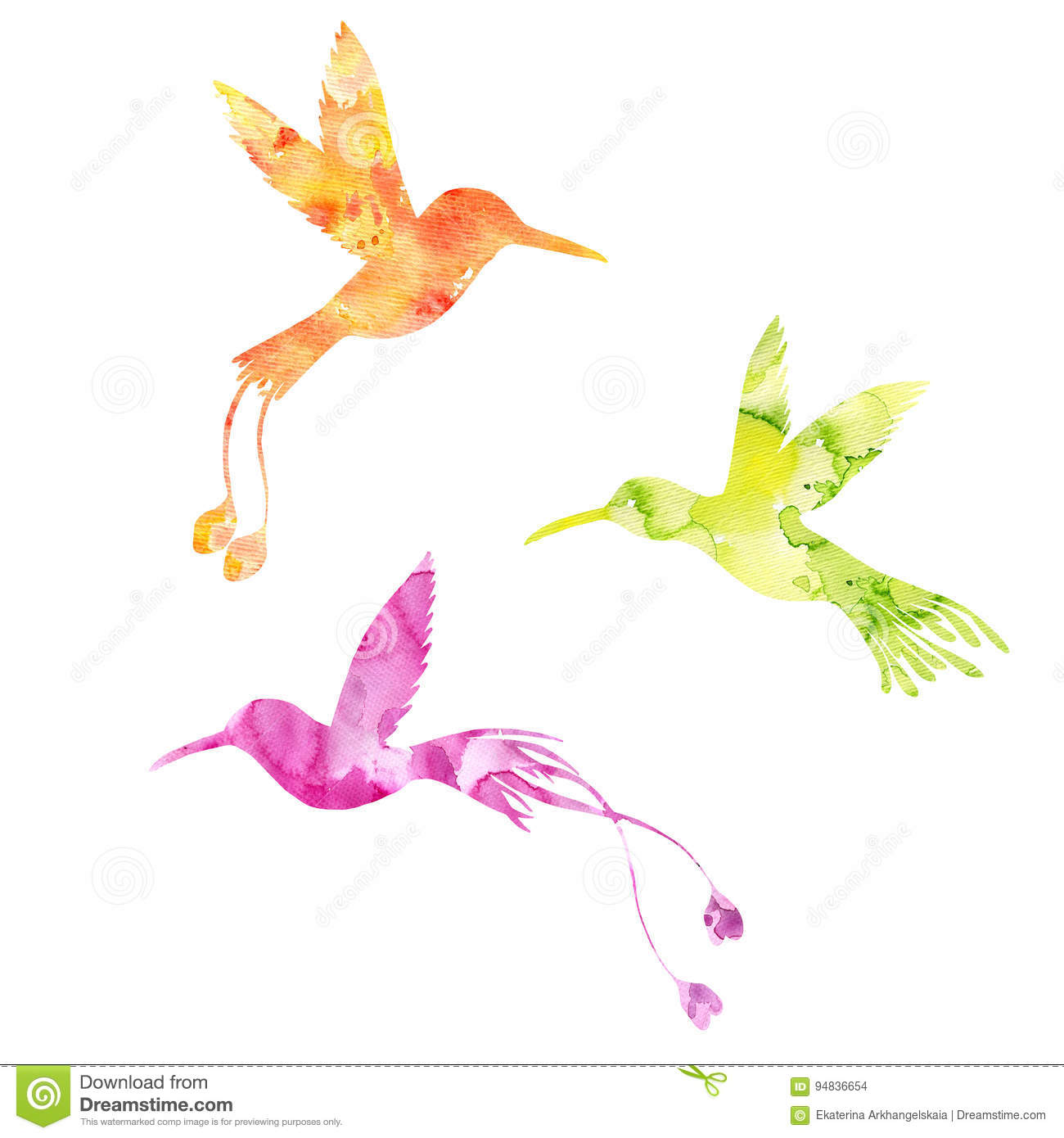 Pdf Case 990 Tractor Starter Switch Wiring Diagram Hummingbird Watercolor Bird Illustration Hand Drawn Stock Auto Rh Kitchat Me