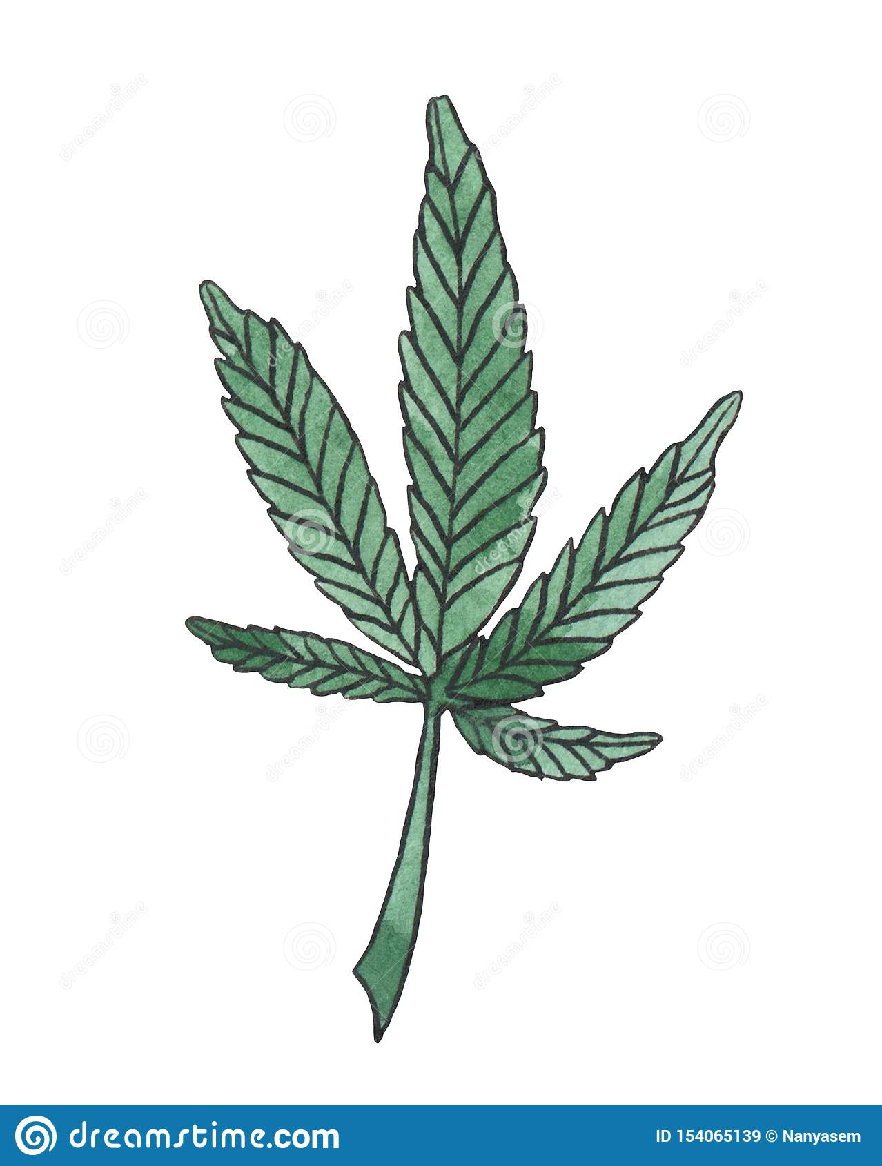 Watercolor illustration branch of Green Hemp leave
