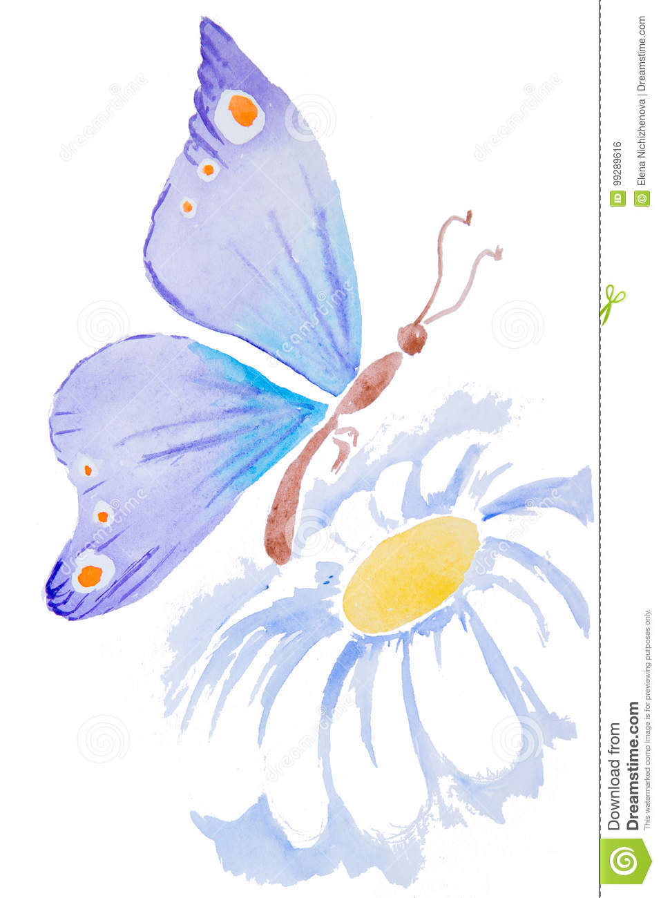 Watercolor Illustration Of A Butterfly On A Flower Stock