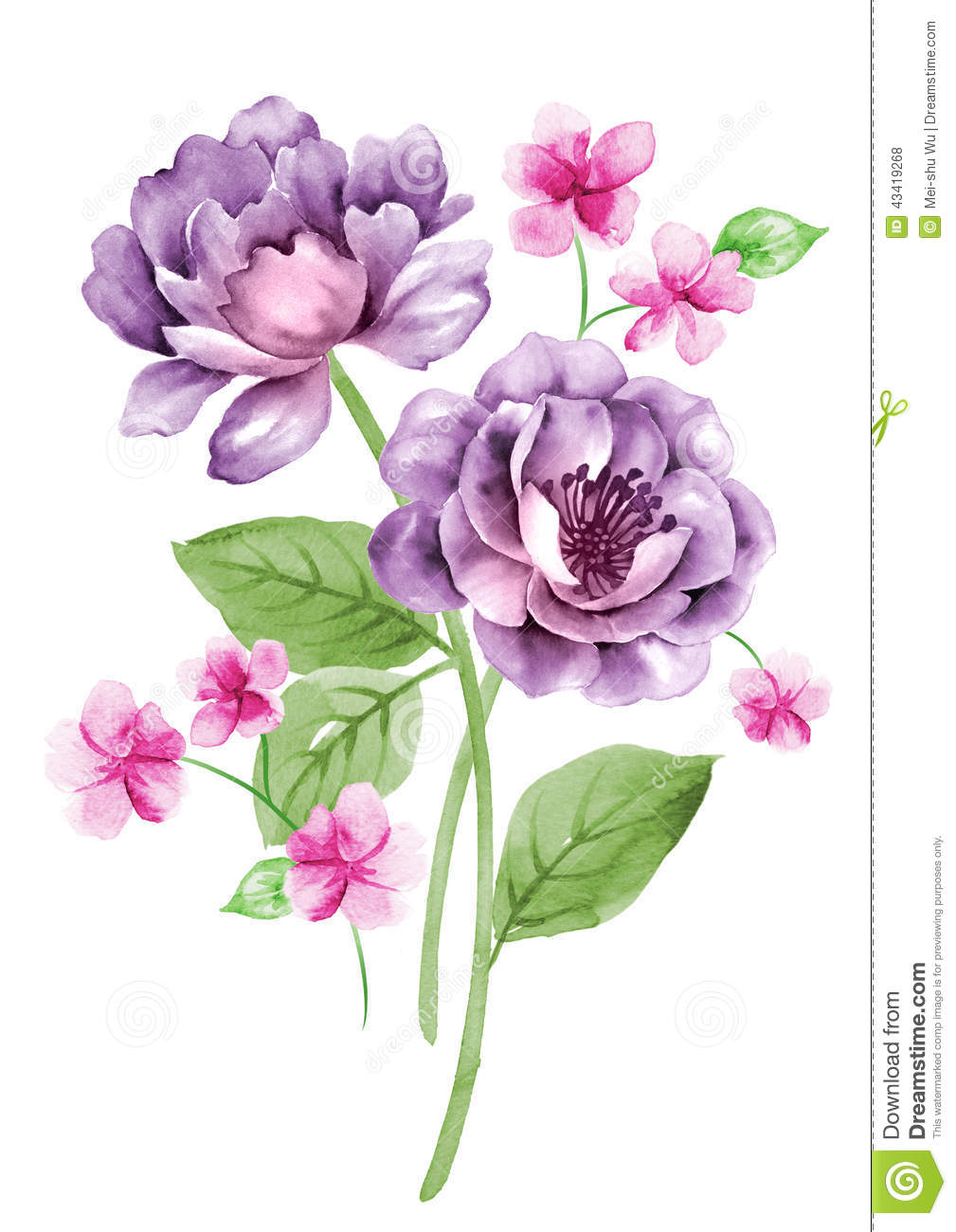 Watercolor Illustration Flower In Simple Background Stock ...