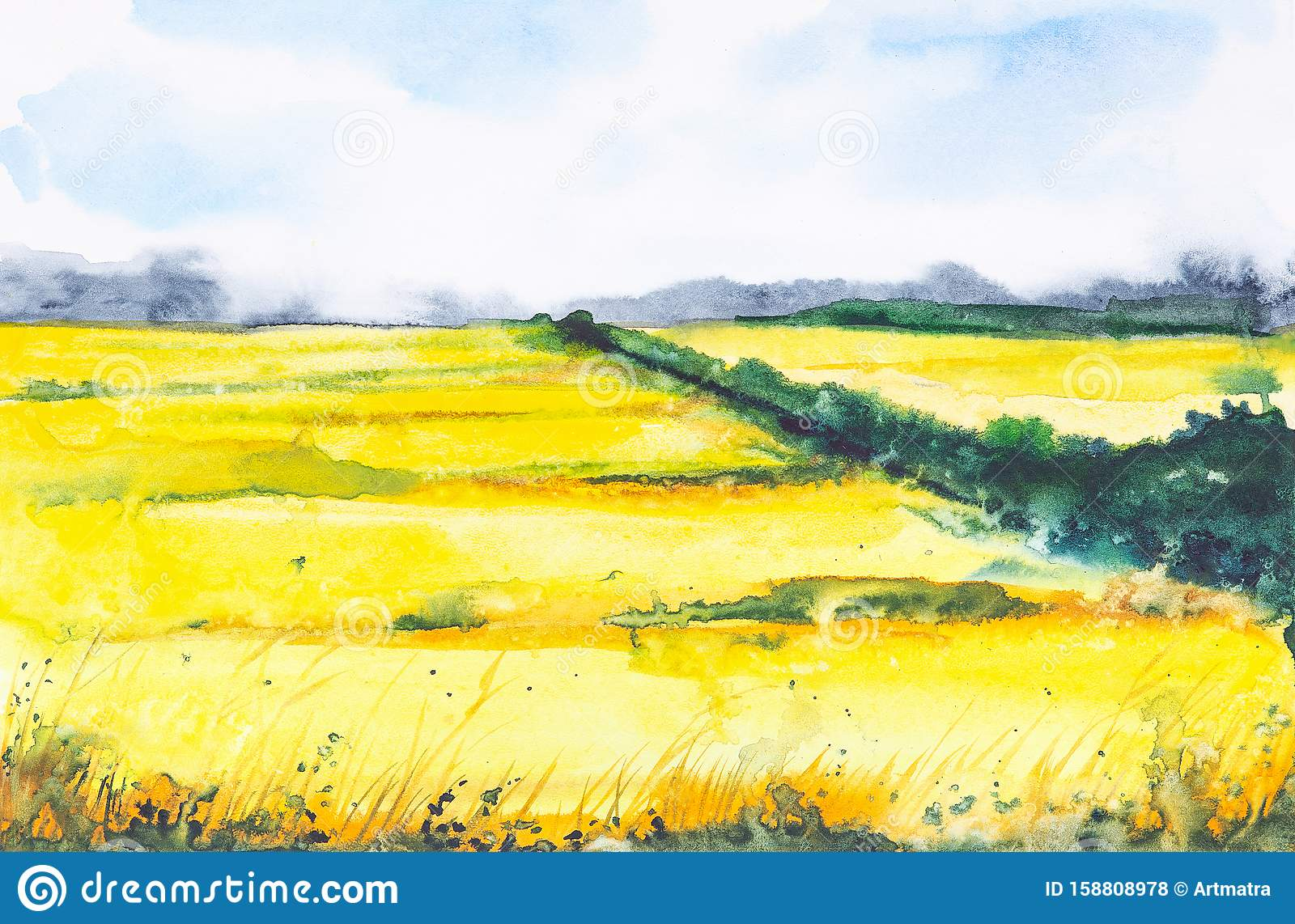 Watercolor illustration of a Russian field with a forest in the background
