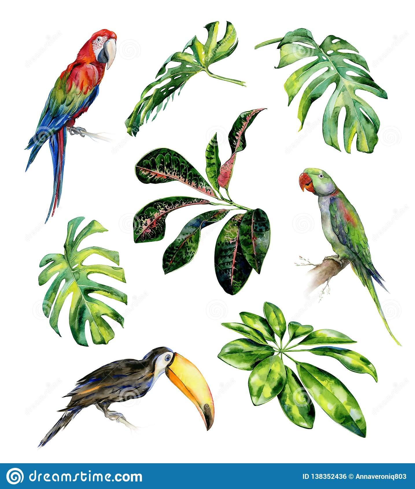 Watercolor illustration set of tropical leaves and birds.