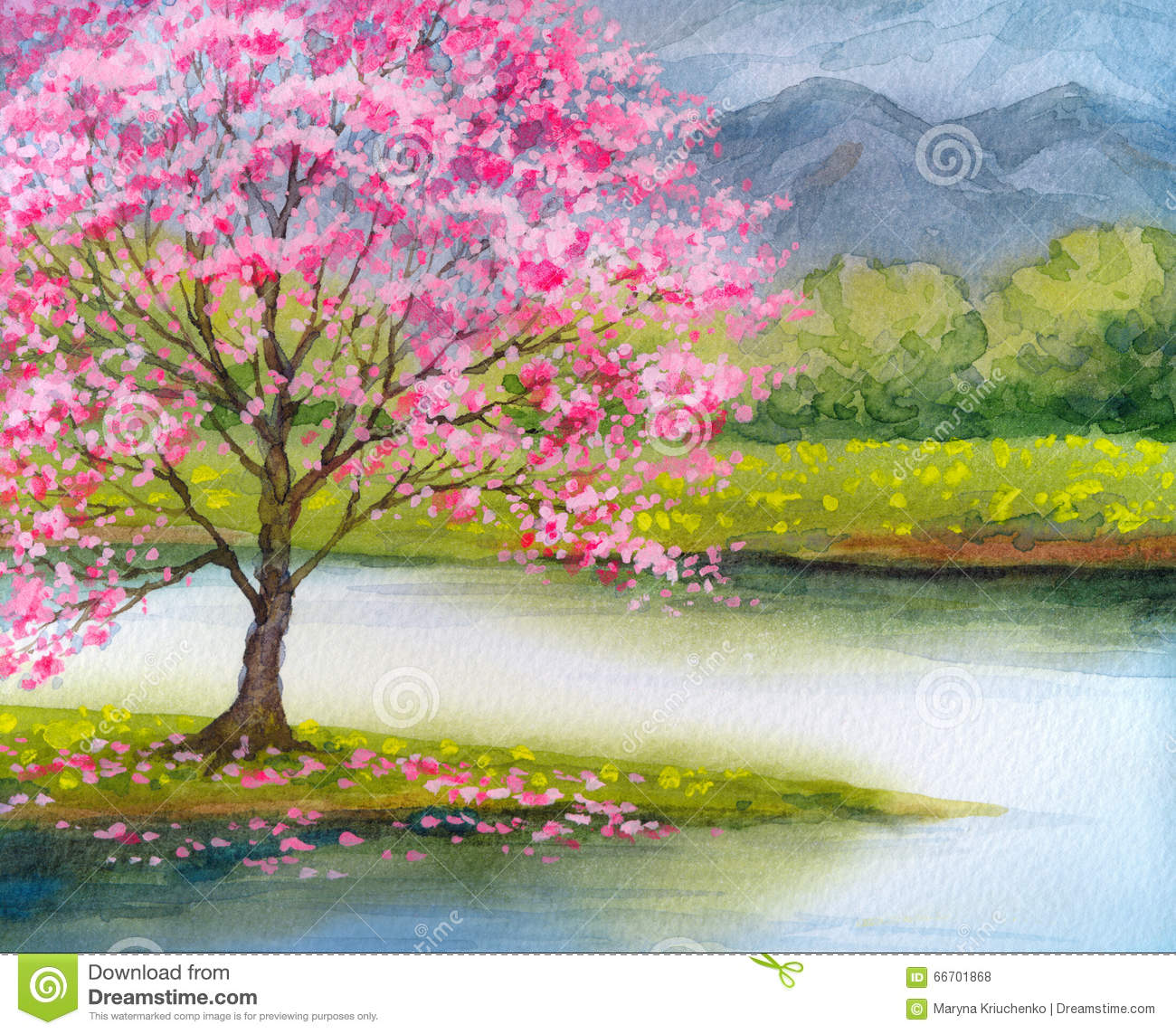 watercolor landscape flowering pink tree by lake stock illustration