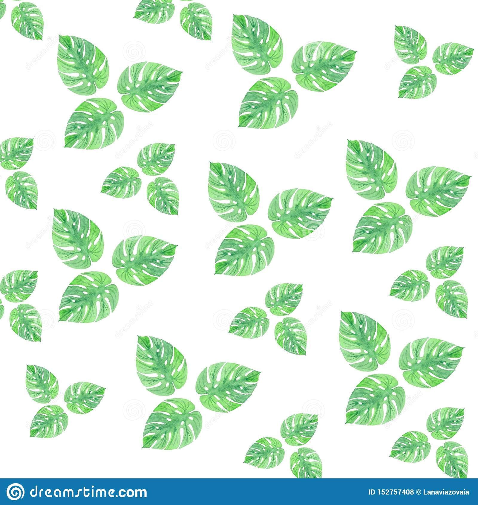 Watercolor Leaves Summer Green Pattern Isolation Gentle Drawing Wallpaper Stock Illustration Illustration Of Greenery Green 152757408