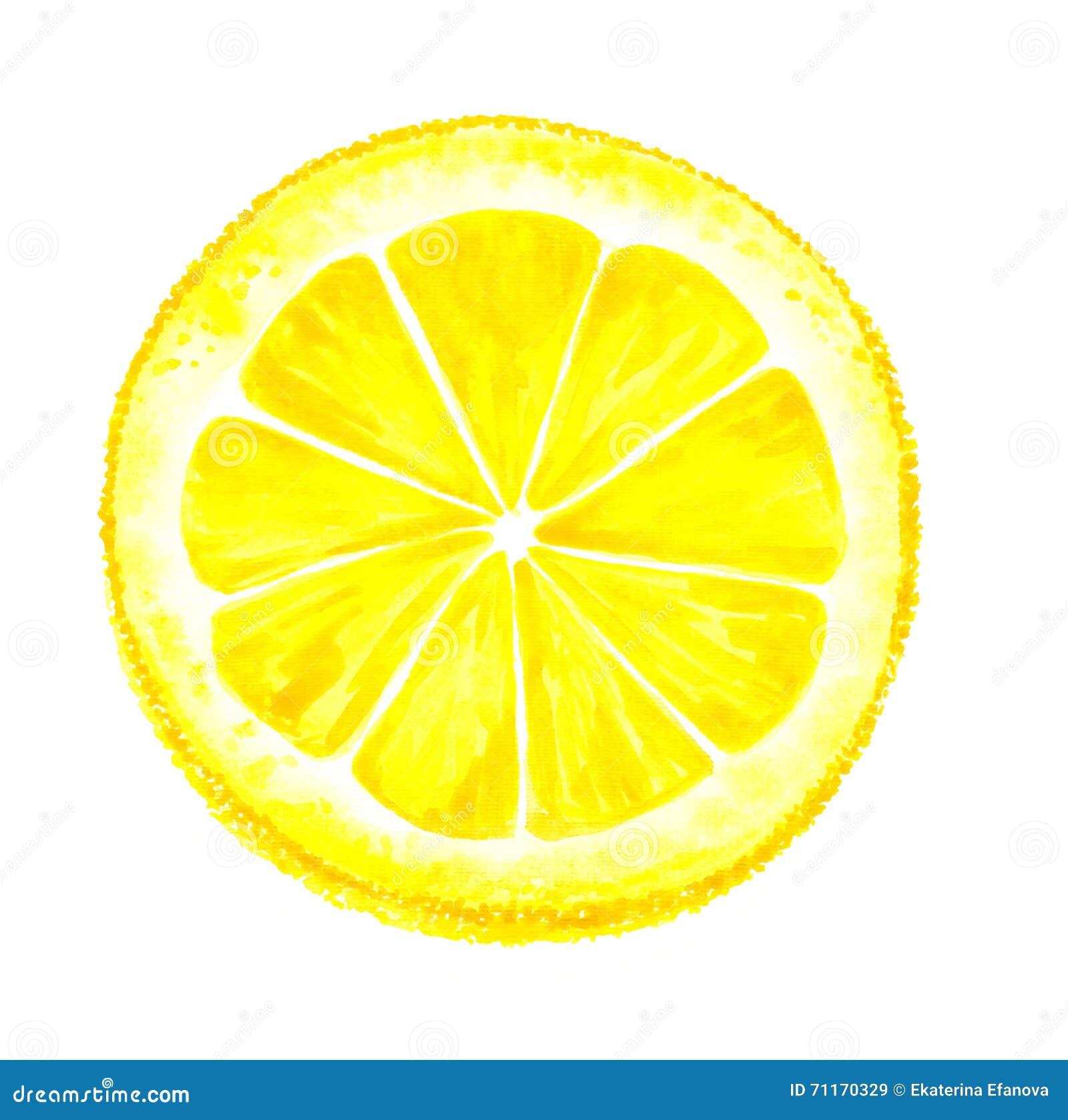Watercolor Lemon Cut Royalty Free Stock Photo