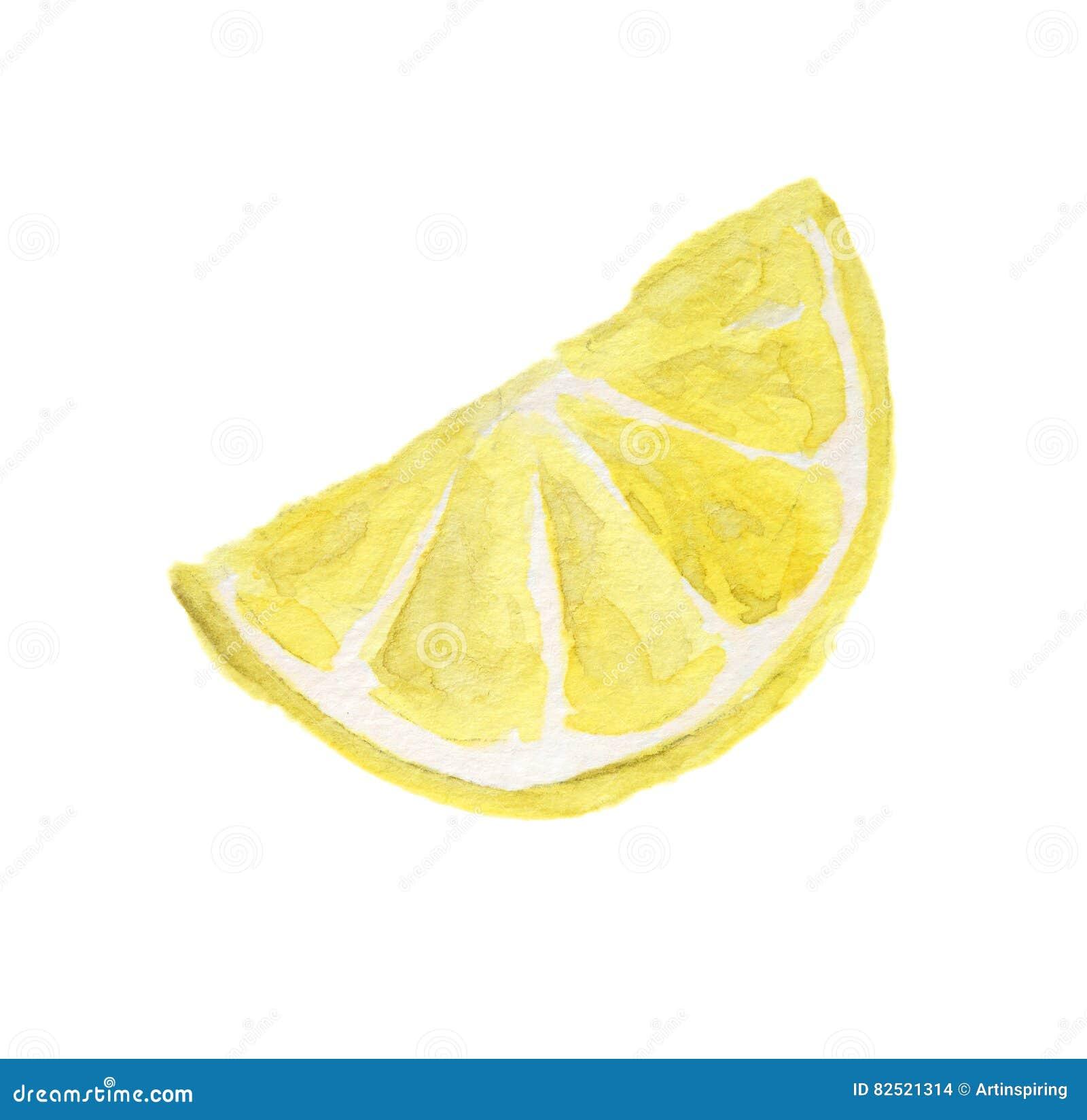 watercolor lemon slice stock illustration illustration of isolated