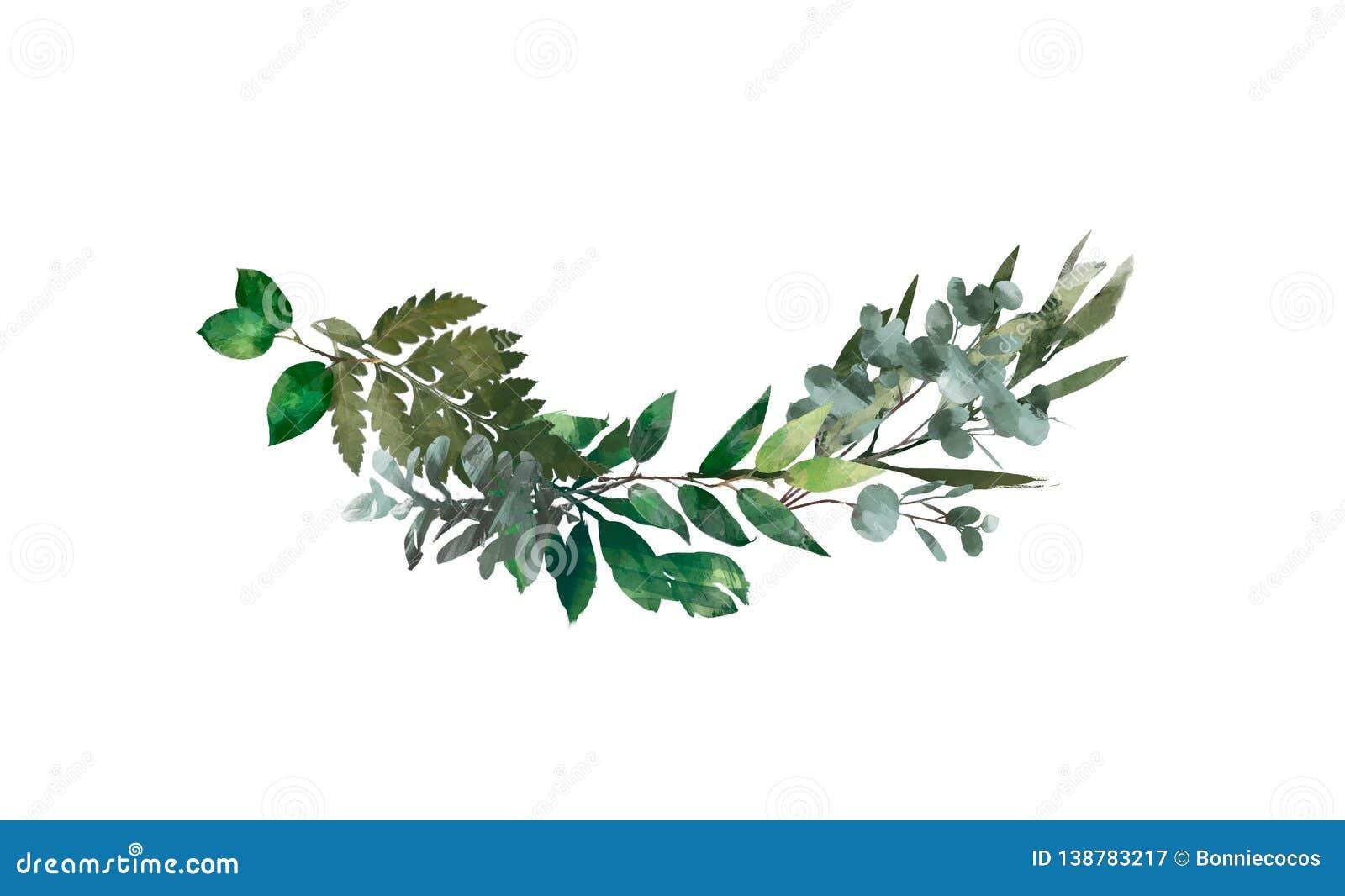Watercolor modern decorative element. Eucalyptus round Green leaf Wreath, greenery branches, garland, border, frame, elegant