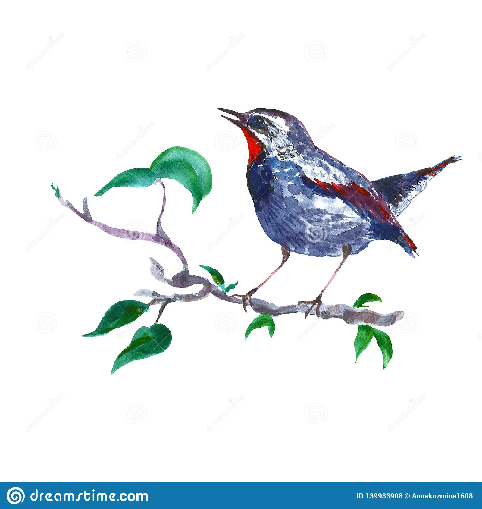 Watercolor Nightingale Bird On Tree Branch Isolated On White Background Spring Hand Painted Illustration In Vintage Style Stock Illustration Illustration Of Apple Love 139933908