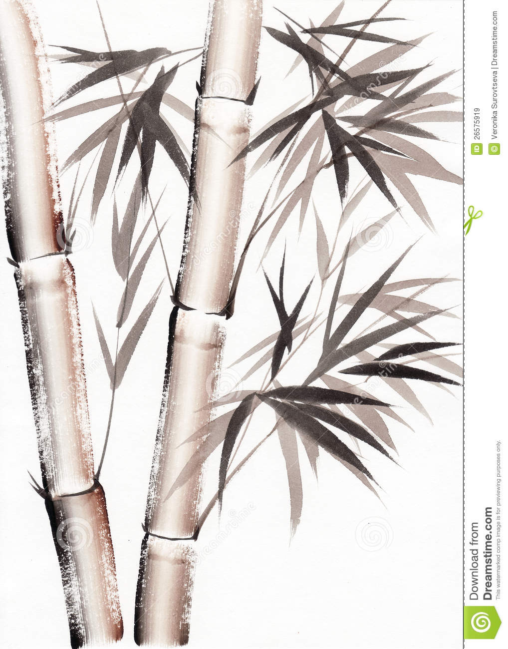 Watercolor painting of bamboo royalty free stock images image