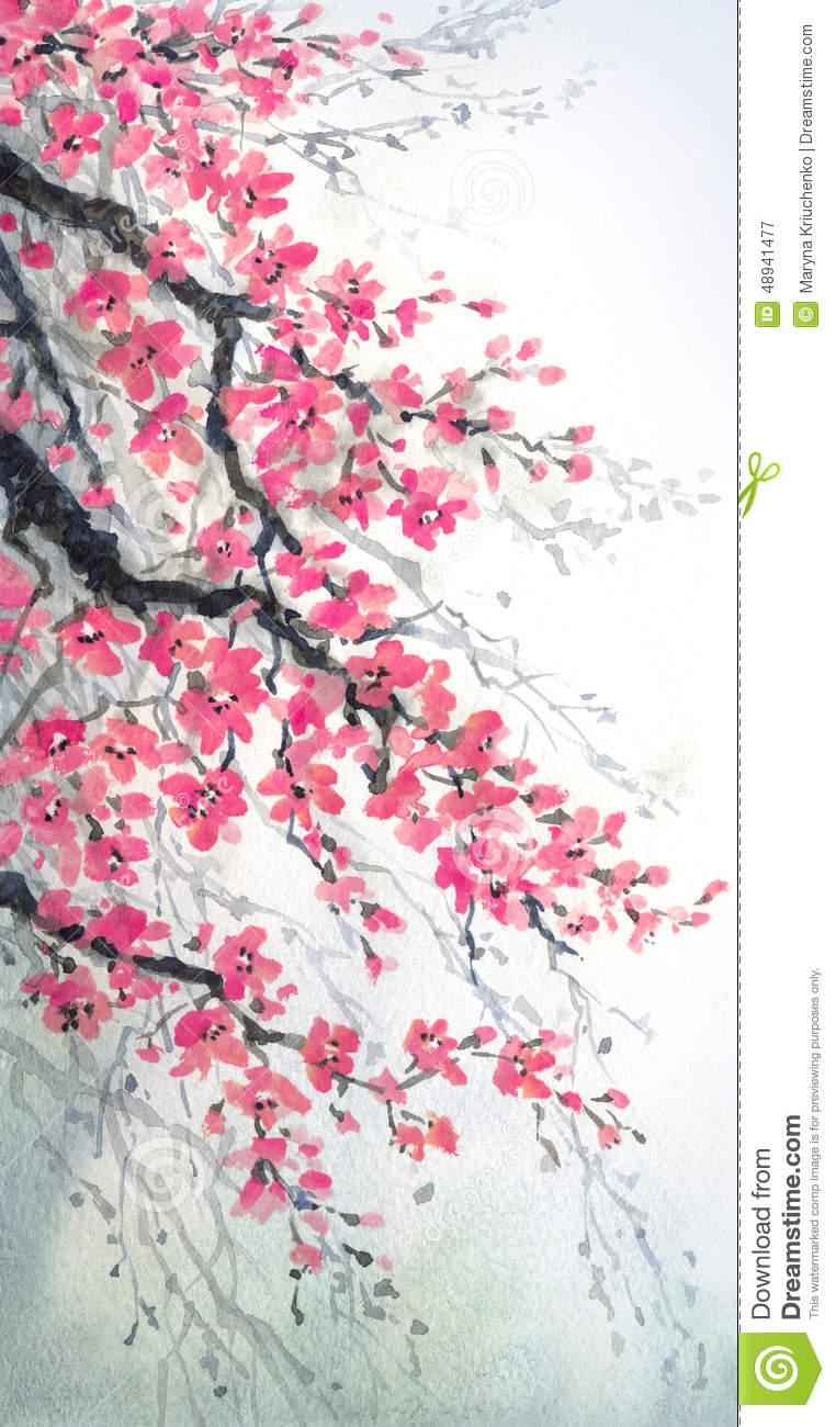 Watercolor Painting Branches Of Blossoms Cherry Stock