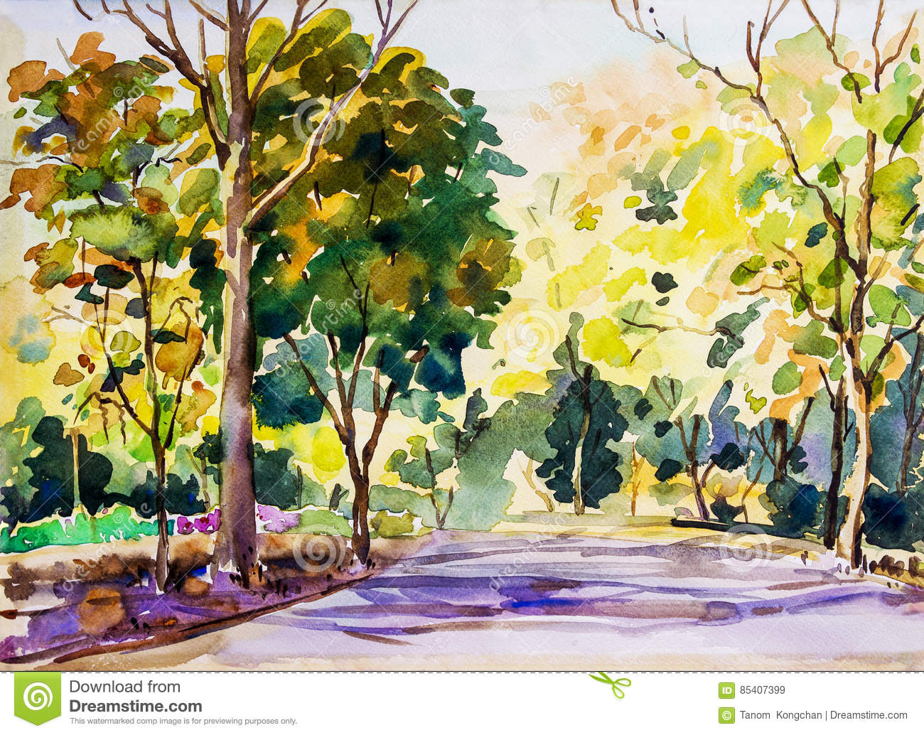 Watercolor Painting Colorful Of The Road In The Woods Autumn. Stock ...