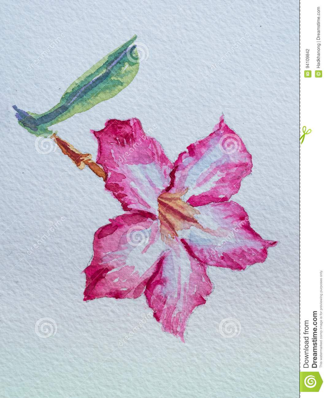 115 Aesthetic Flower Painting Photos Free Royalty Free Stock Photos From Dreamstime