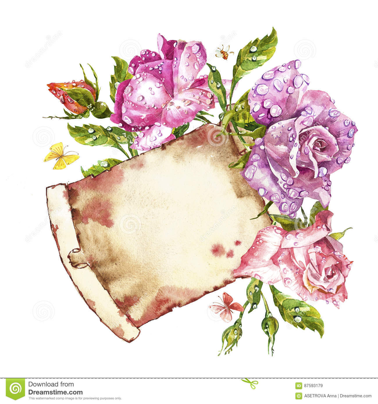 Watercolor Painting Greeting Cards Rose Background Watercolor