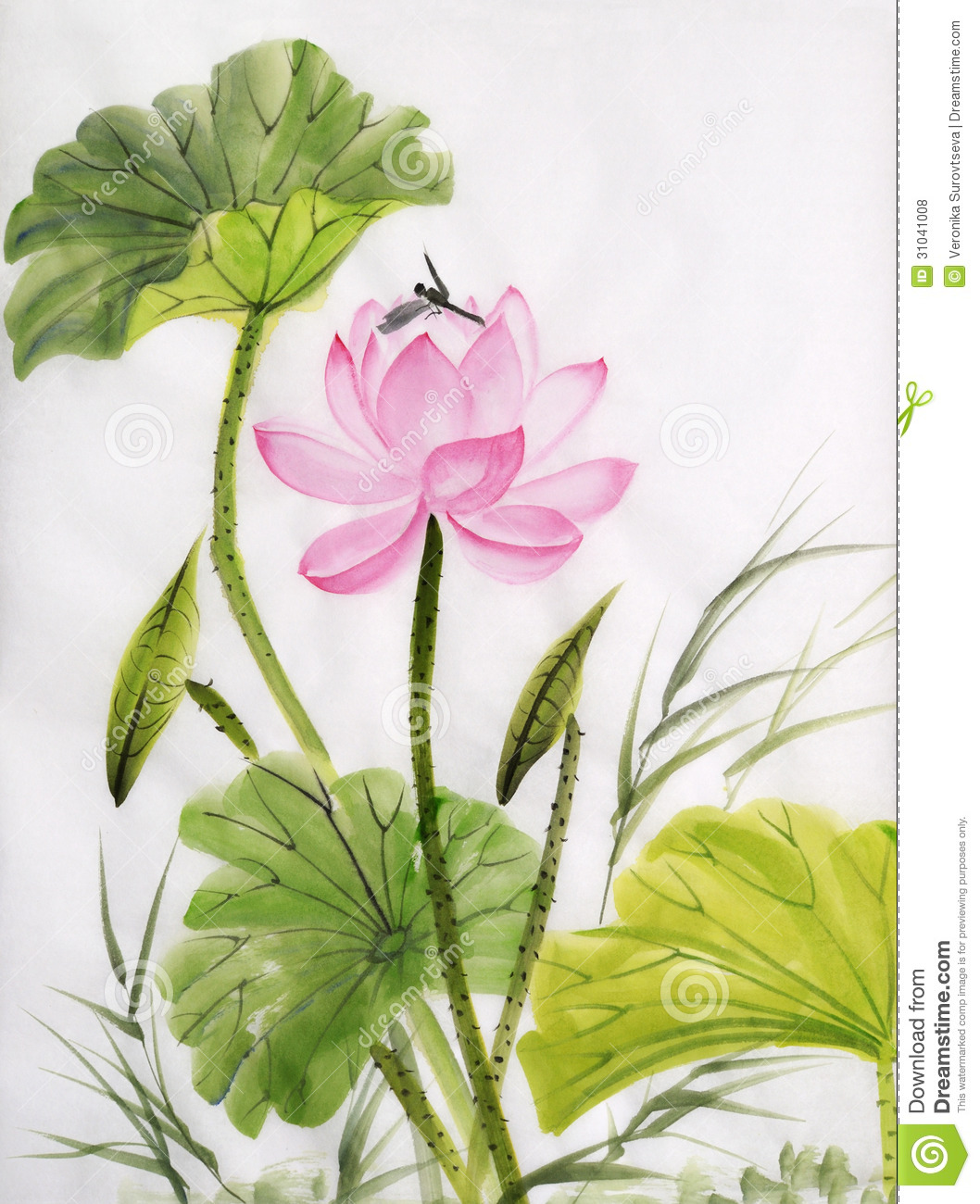 Watercolor Painting Of Lotus Flower Stock Illustration