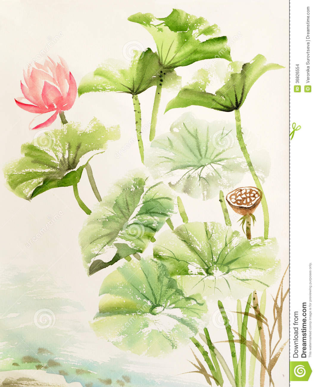 Watercolor Painting Of Lotus Leaves And Flower Stock Illustration