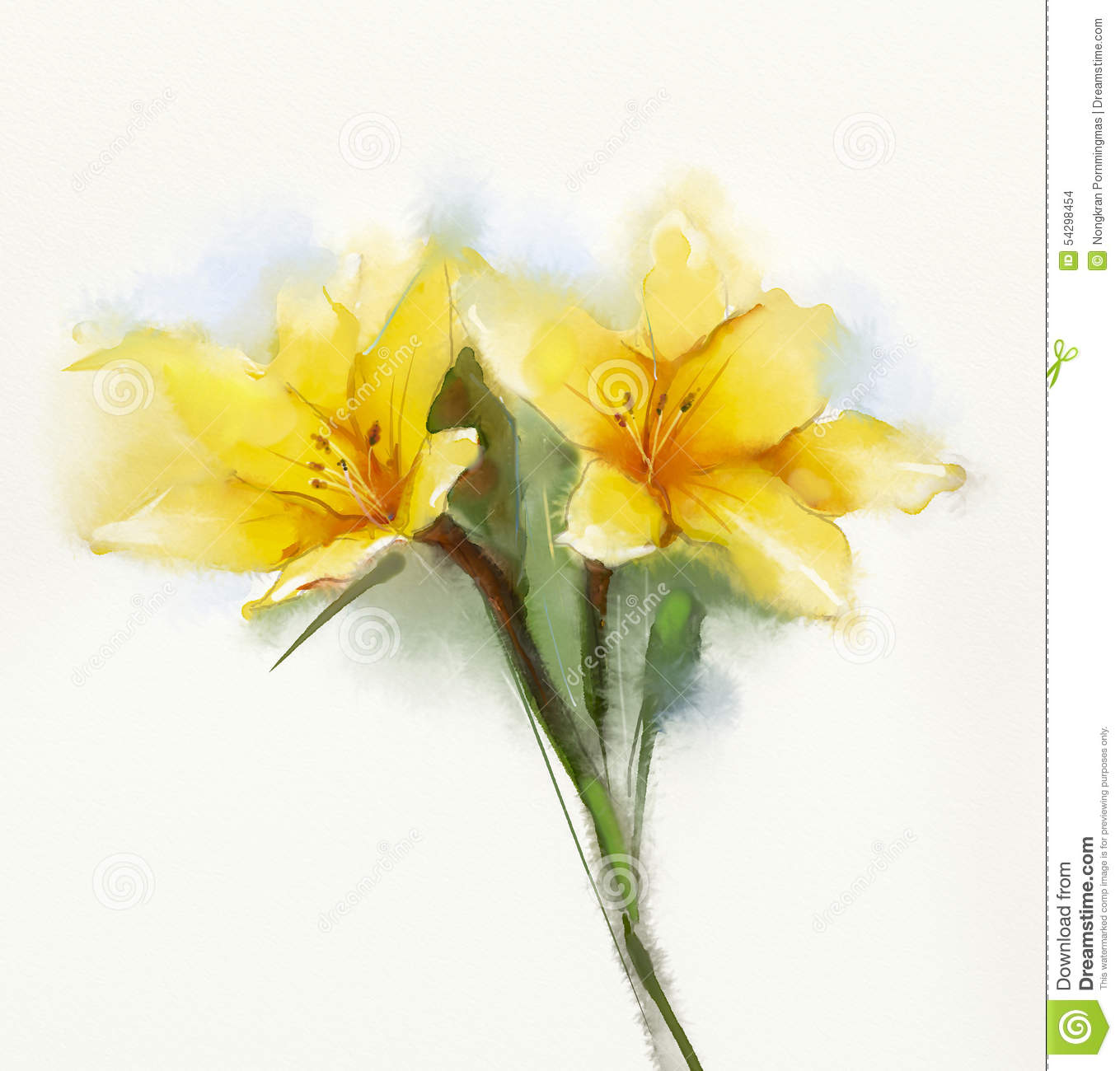 Watercolor painting yellow lilies flower stock illustration watercolor painting yellow lilies flower mightylinksfo