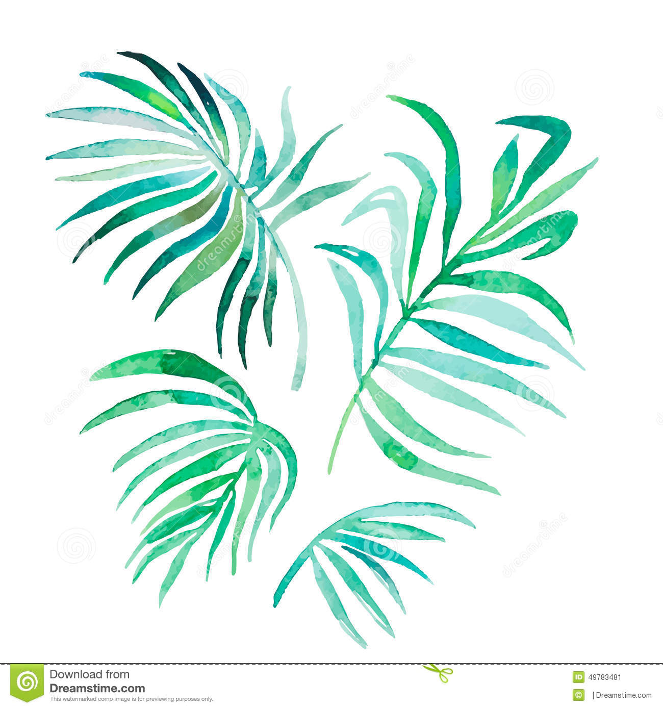 Watercolor Palm Leaves Isolated On White.Vector Stock Vector ...