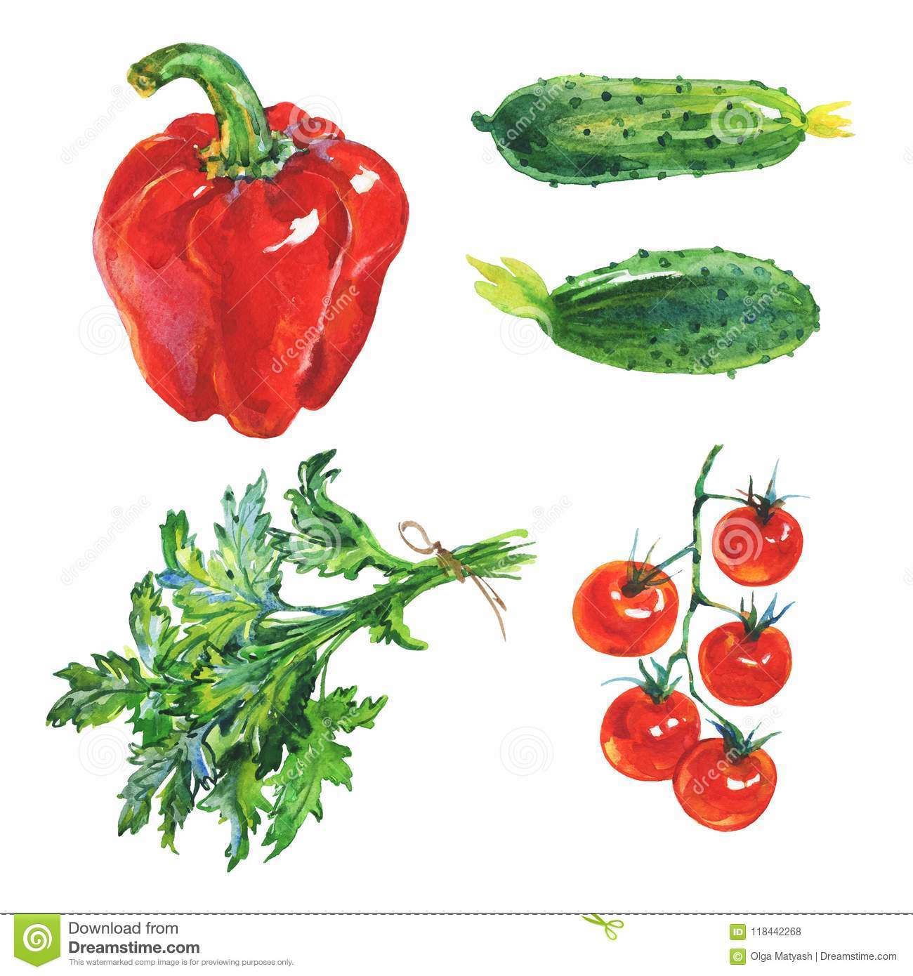 Watercolor paprika, cucumbers, parsley, tomatoes
