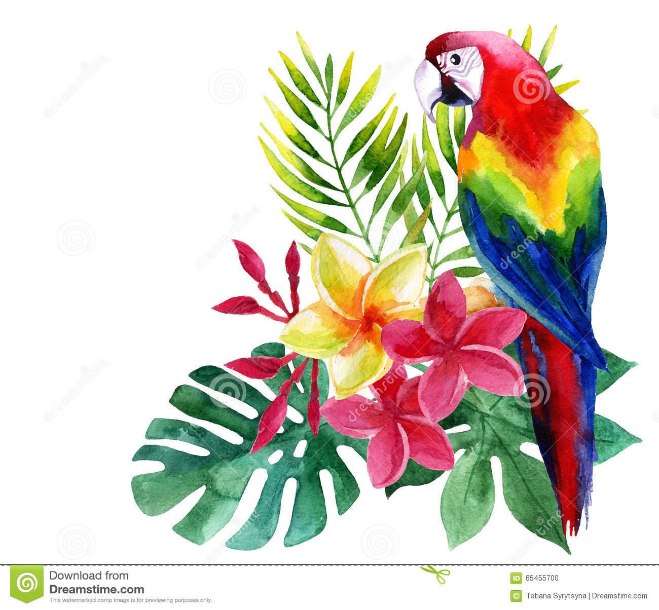 watercolor parrot with exotic flowers and leaves stock Blue Jay Clip Art Free Free Bird Clip Art