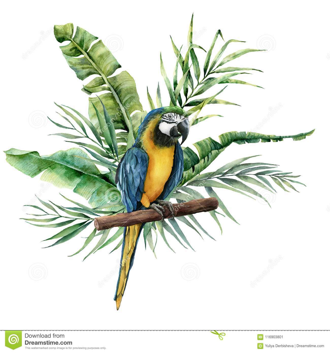 Watercolor parrot with tropical leaves. Hand painted parrot with monstera, banana and palm greenery branch isolated on