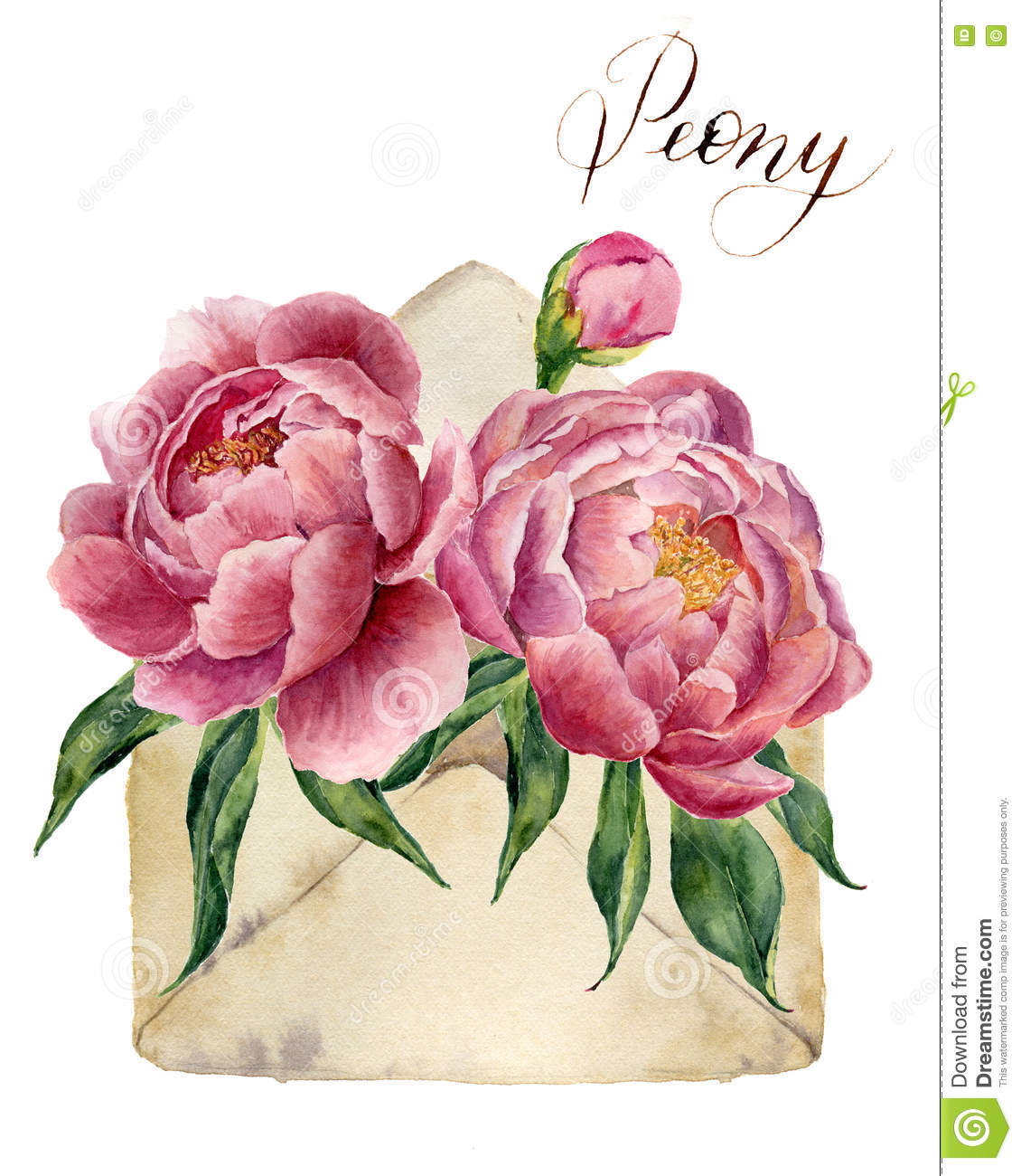 Watercolor peonies bouquet with retro envelope. Vintage mail icon with floral illustration isolated on white background