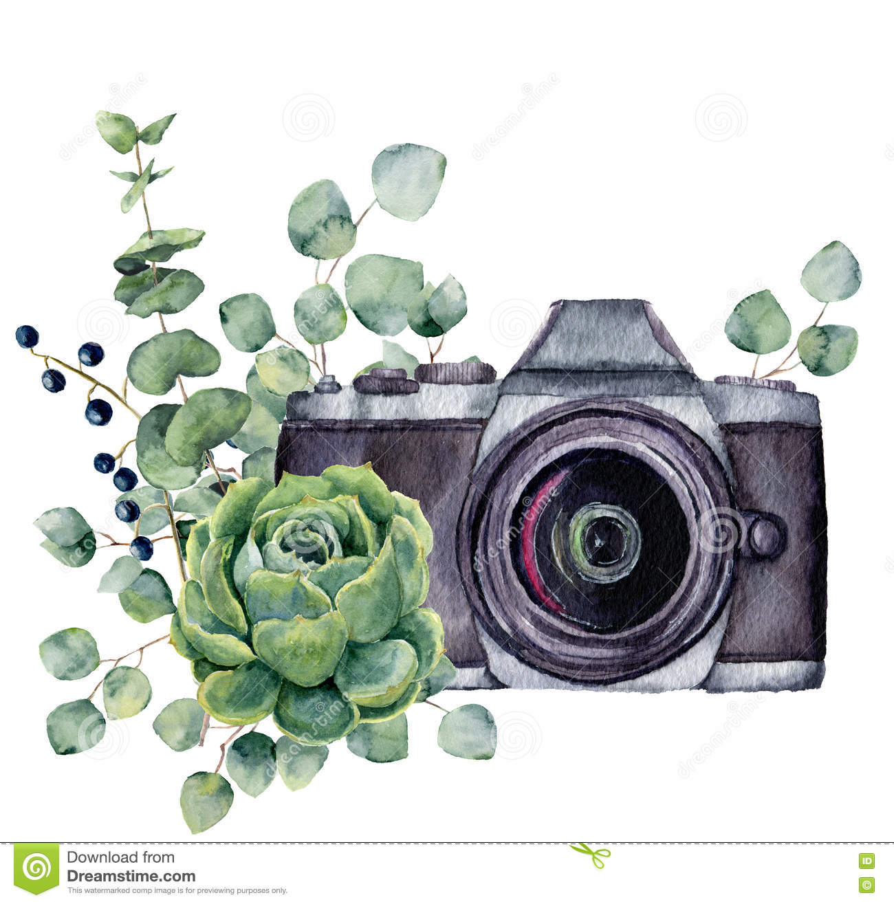 Watercolor photo label with succulent and eucalyptus hand for Camera gratis