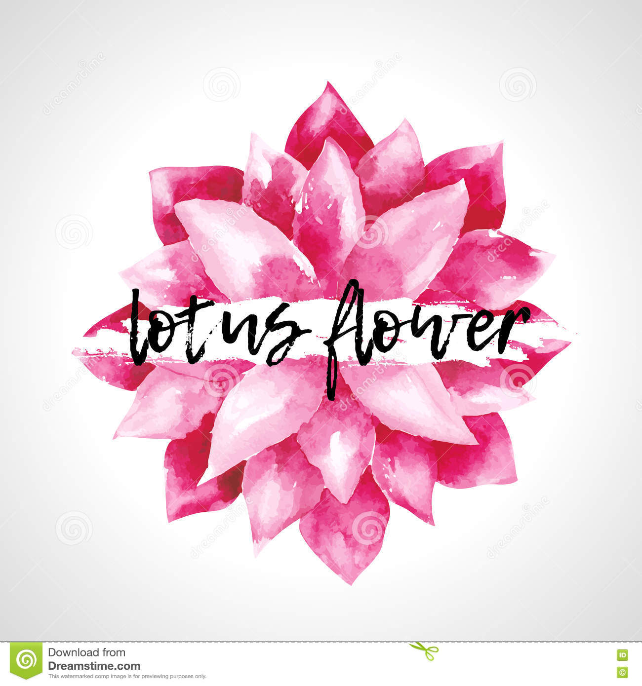 Watercolor Pink Lotus Flowers Isolated Stock Vector Illustration