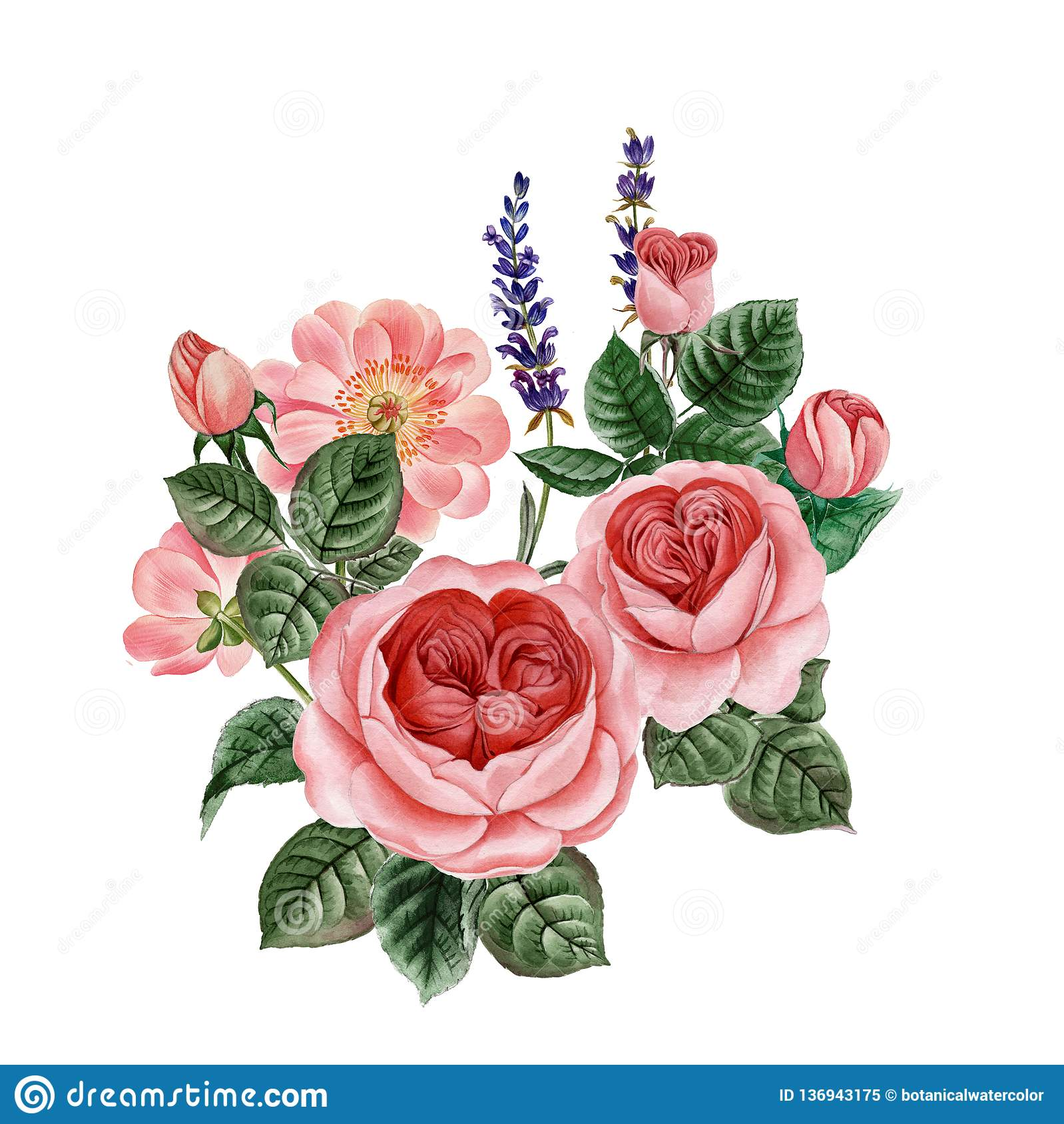 Pink Peony And Rose Wedding Flower Bouquet Stock Illustration Illustration Of Decorative Pink 136943175