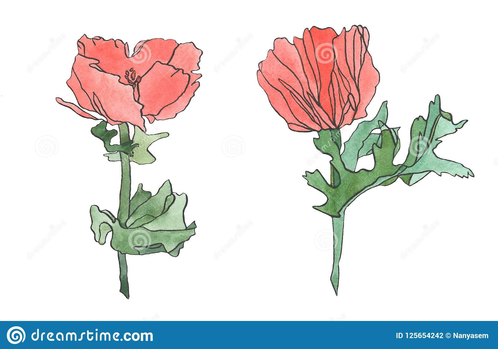 Watercolor pink red poppy flower with leaves stock illustration download watercolor pink red poppy flower with leaves stock illustration illustration of design colorful mightylinksfo