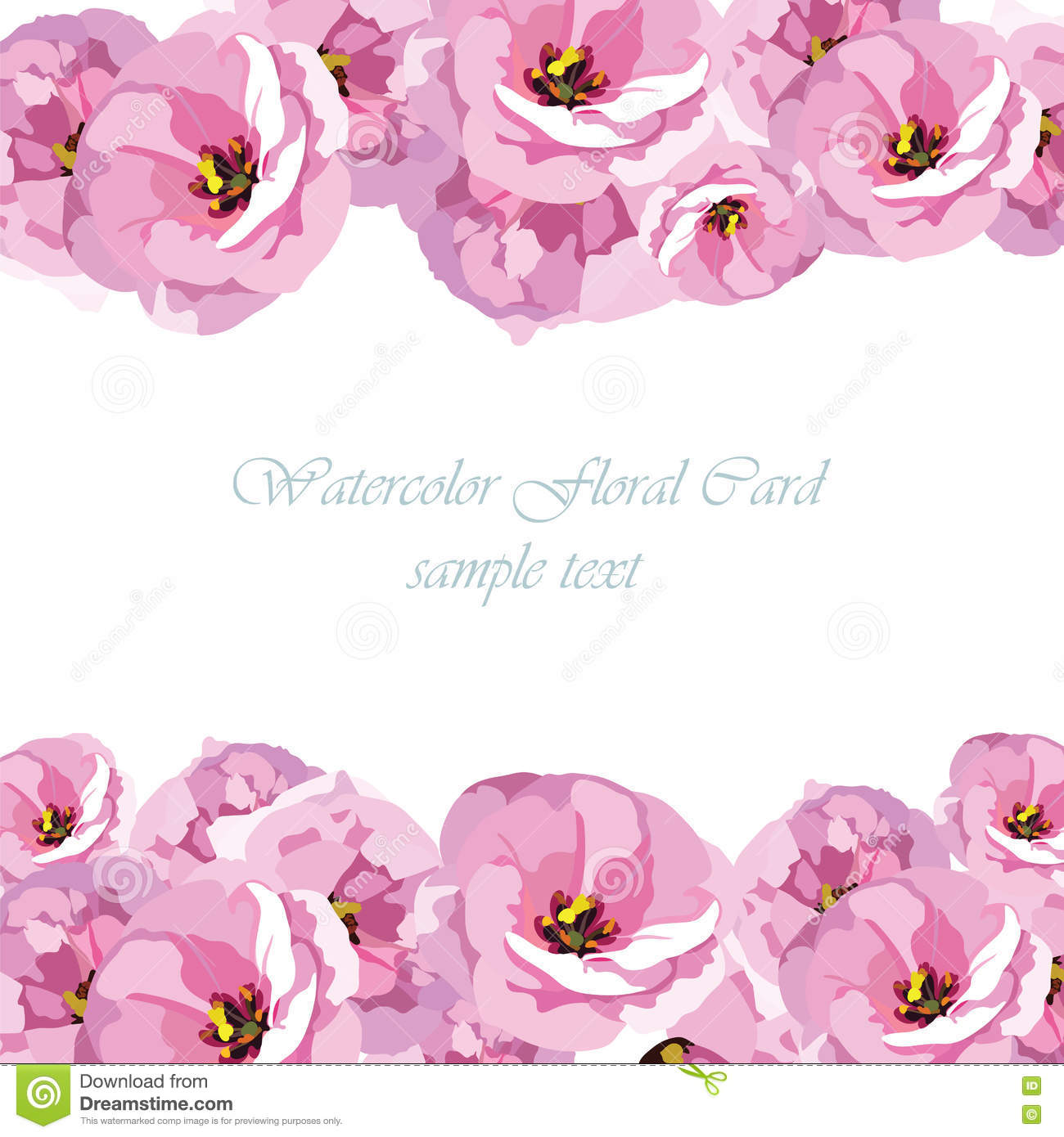 Watercolor Pink Rose Flowers Card Stock Vector Illustration Of