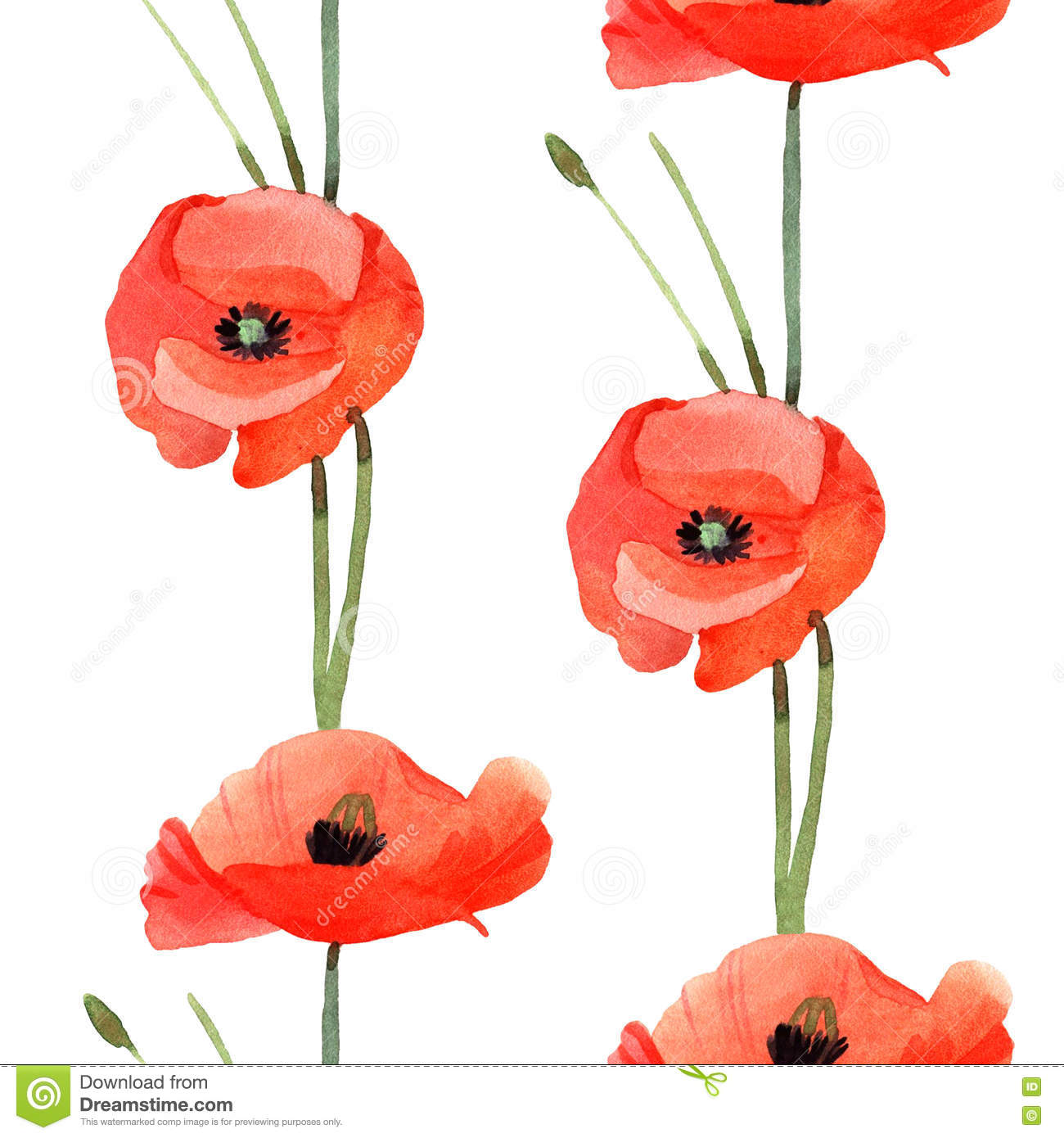 Watercolor Poppy Hand Painted Draw Stock Illustration