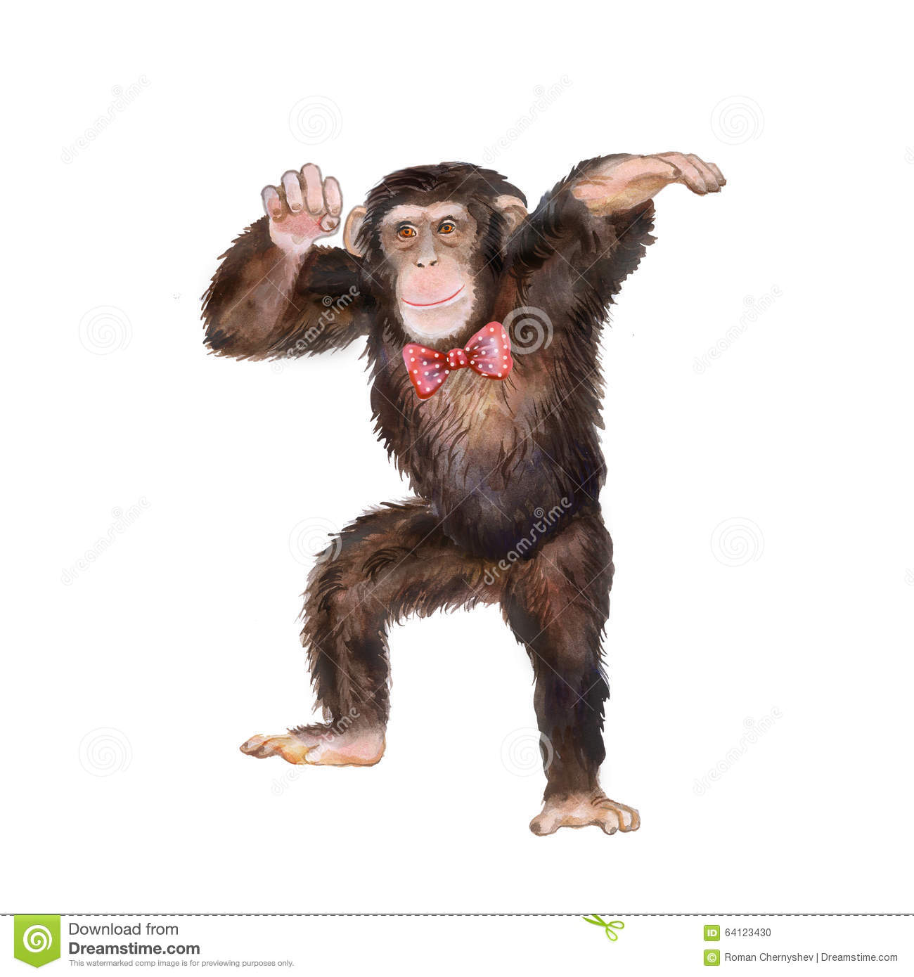 Monkey Giving Thumbs Up Illustrations, Royalty-Free Vector ... |Monkey King Crown