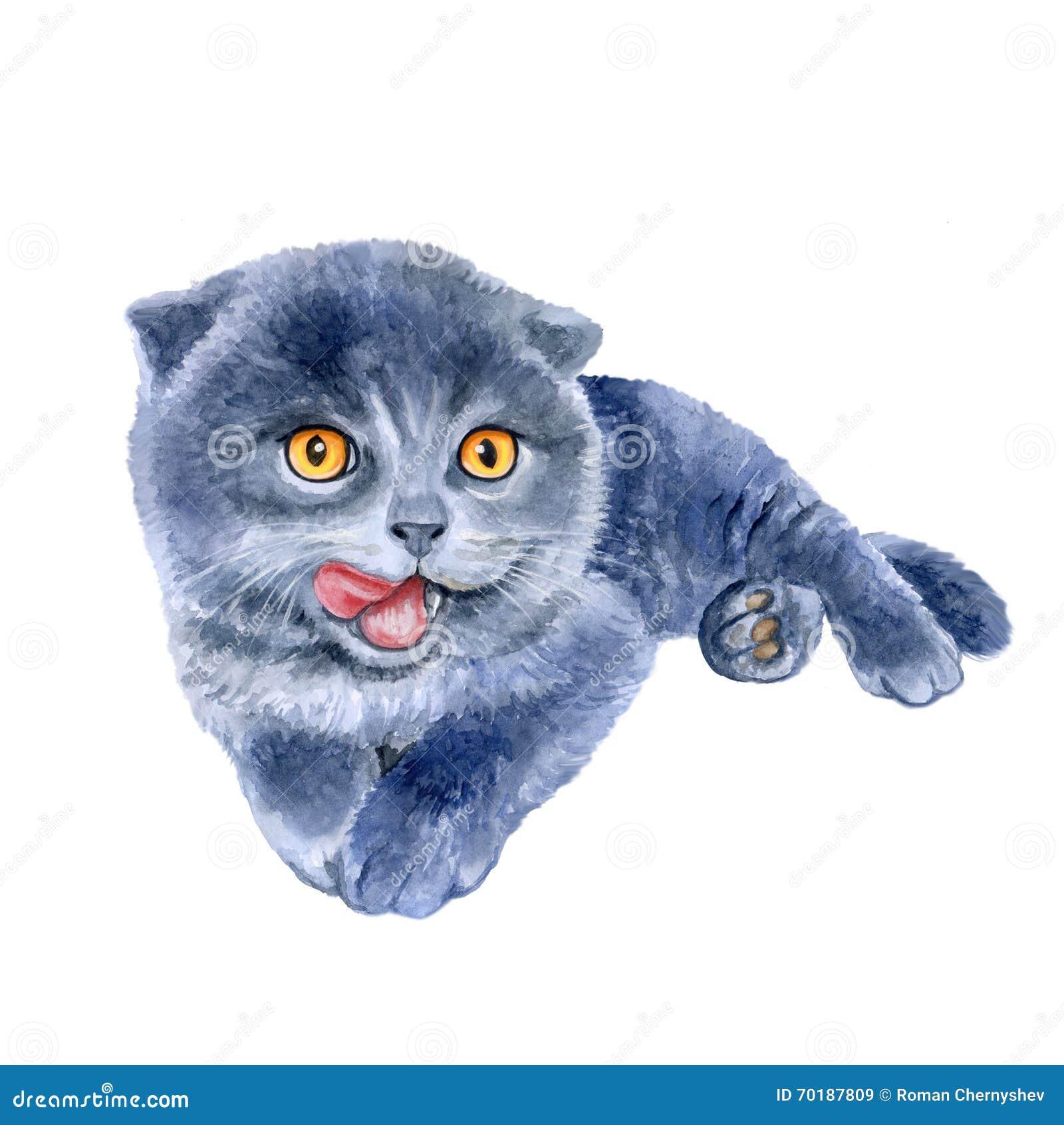 Free Kitten - Lick!