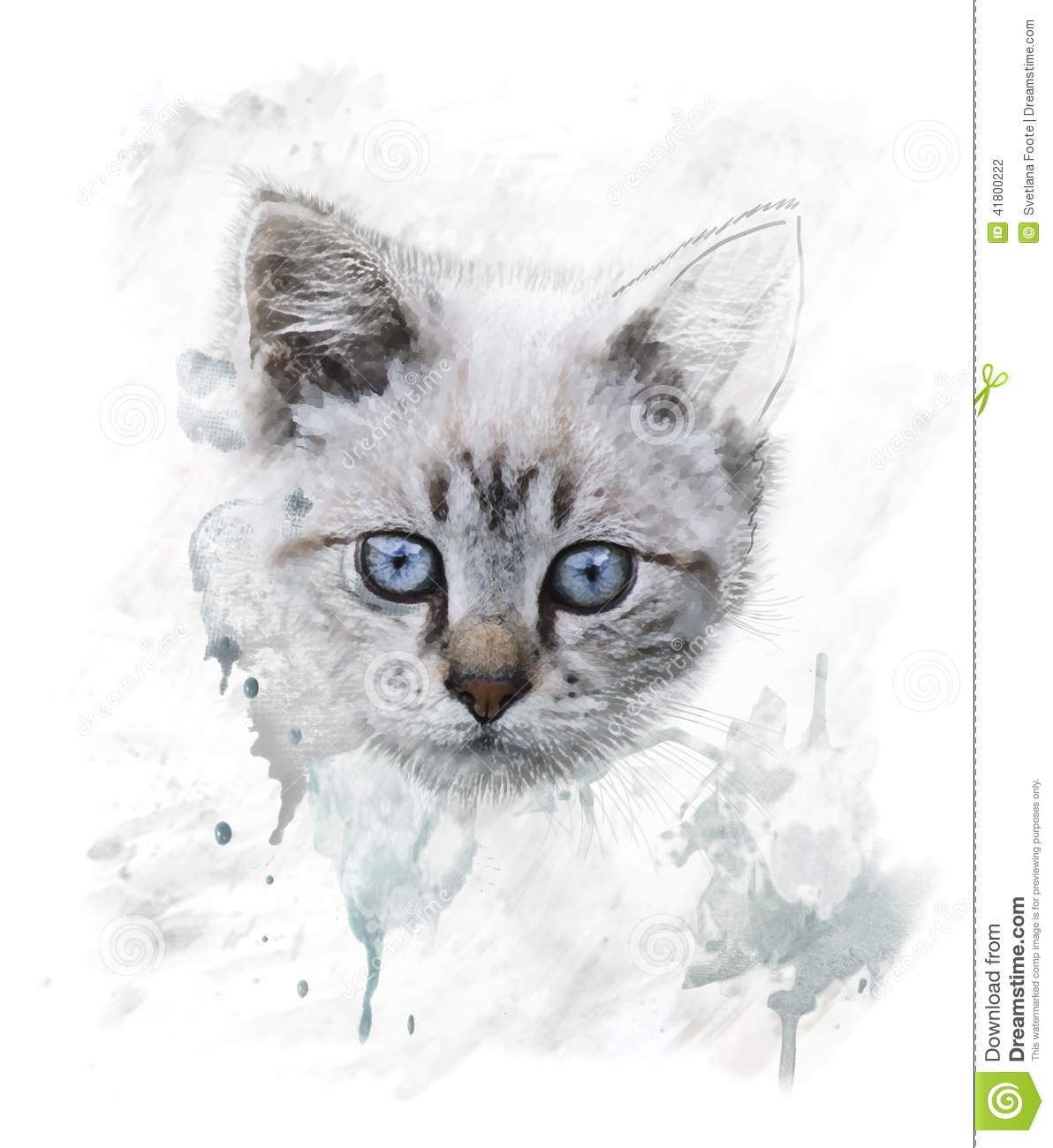 watercolor portrait of young cat stock illustration. Black Bedroom Furniture Sets. Home Design Ideas