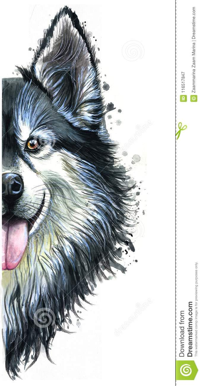 Watercolor Printshop Print On The Theme Of Breed Dogs