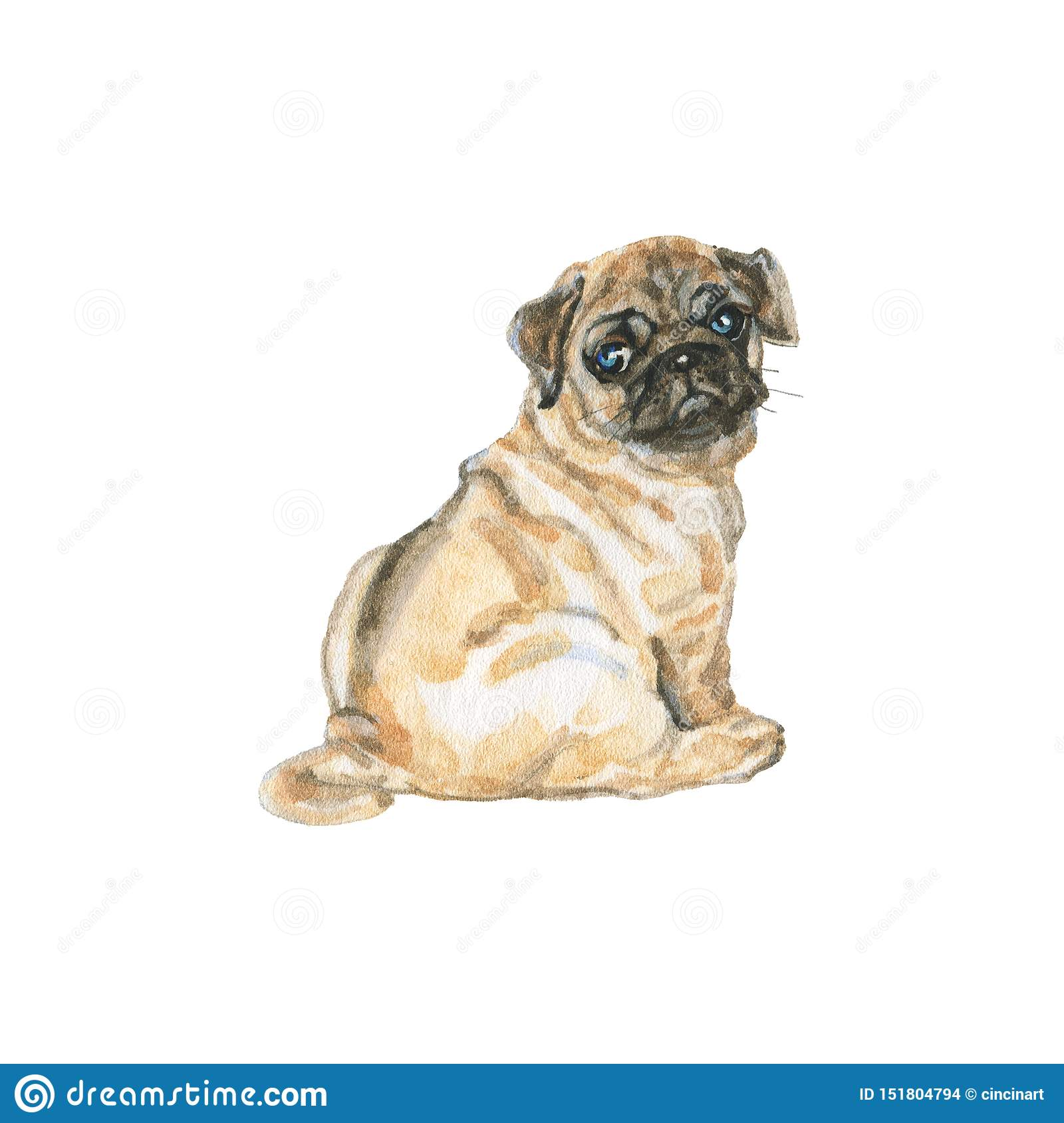 Pug 10x15 FT Photography Backdrop Detailed Portrait Drawing of a Dog Realistic Design of The Pet Animal Digital Art Background for Baby Birthday Party Wedding Vinyl Studio Props Photography
