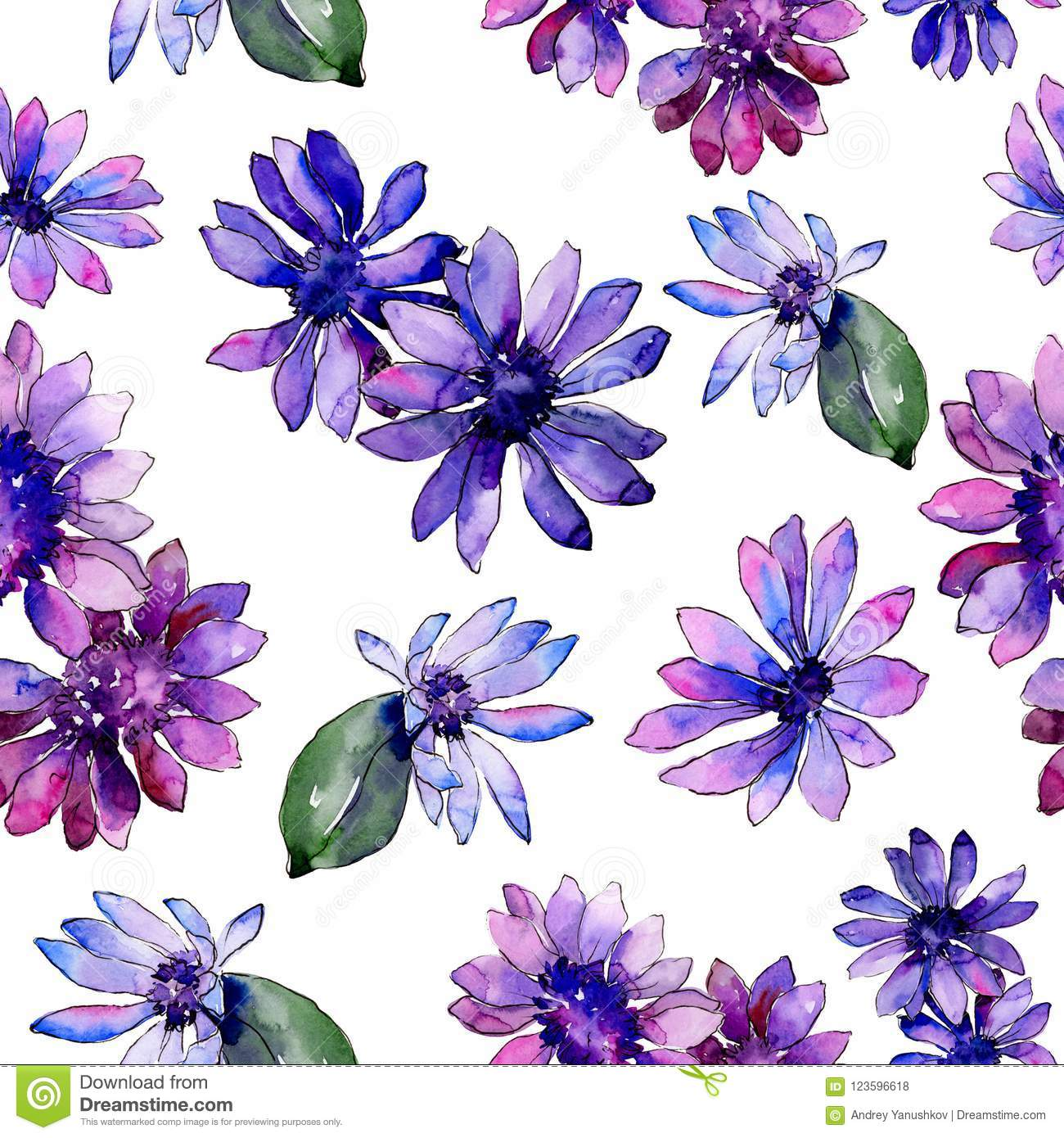 Watercolor Purple African Daisy Floral Botanical Flower