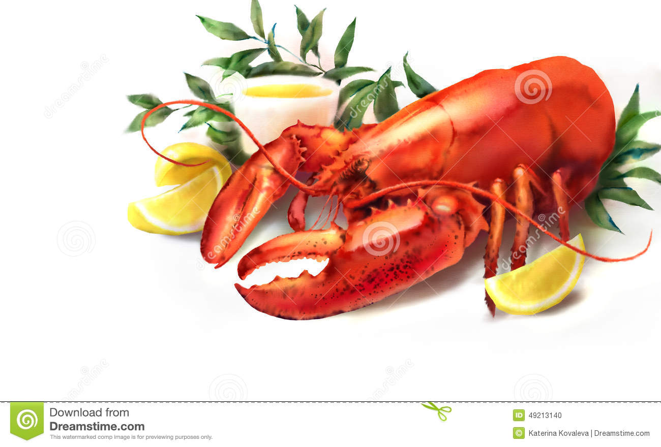 Watercolor Red Lobster And Lemon Illustration Stock Illustration - Image: 49213140