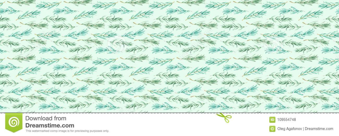 Watercolor Rosemary Pattern Seamless, Green Rosemary Decoration