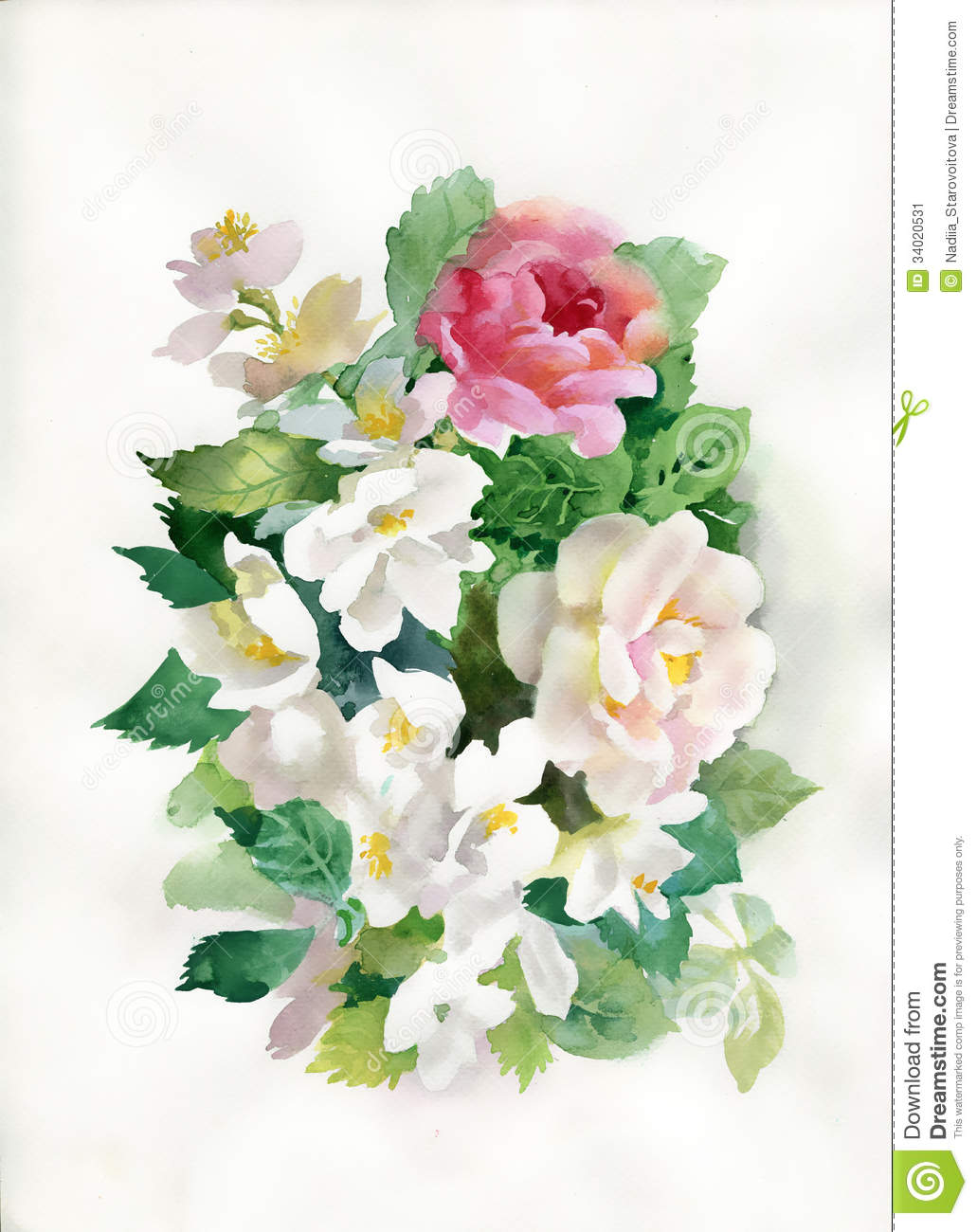 Watercolor Roses Bouquet Stock Image - Image: 34020531