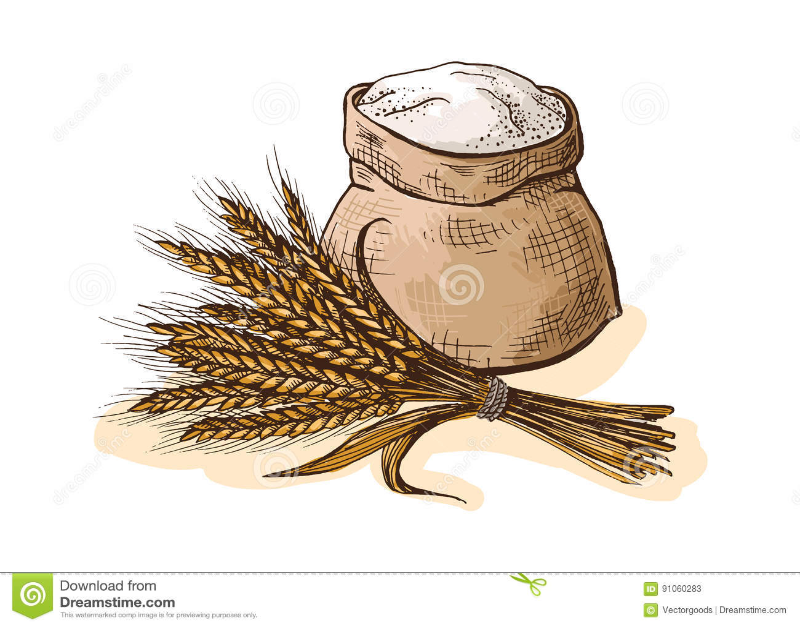 harina dibujo www imgkid com the image kid has it ear of corn clipart ear of corn clip art black and white