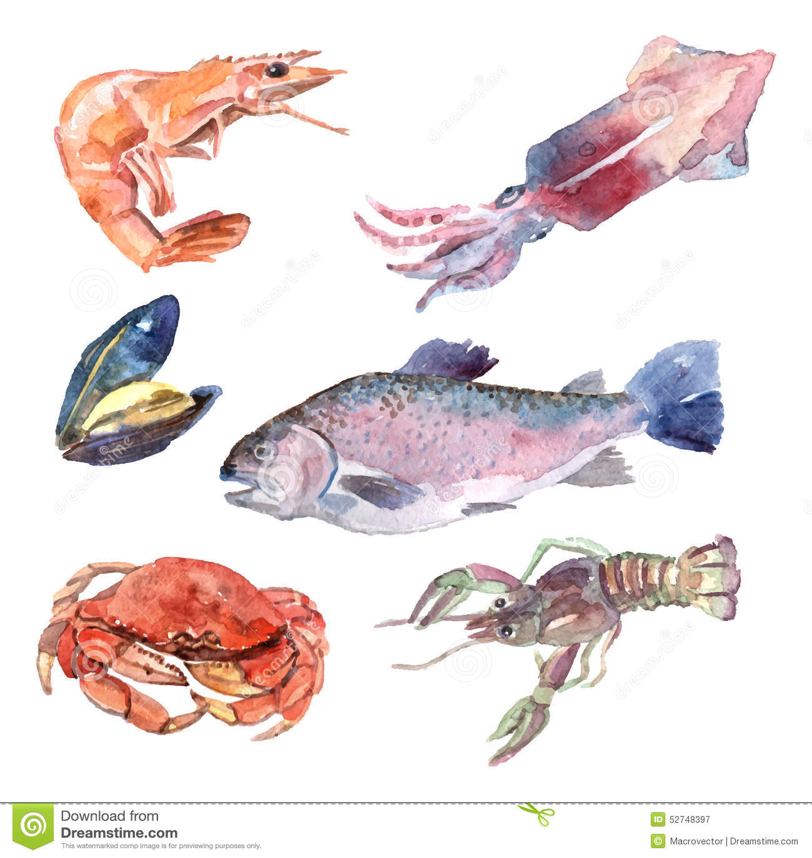 Watercolor Sea Food Set Stock Vector - Image: 52748397