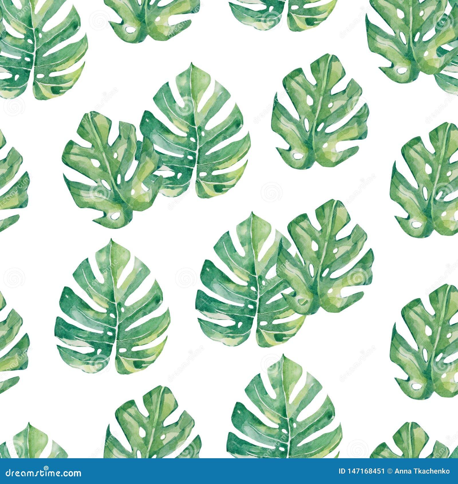 watercolor seamless pattern tropical leaves - Monstera, summer print